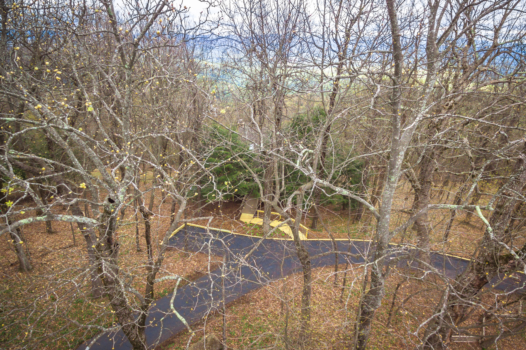 Additional photo for property listing at Mountain Top Overlooking a Pond 453 Sanderlin Mountain Drive Big Canoe, Georgia 30143 United States