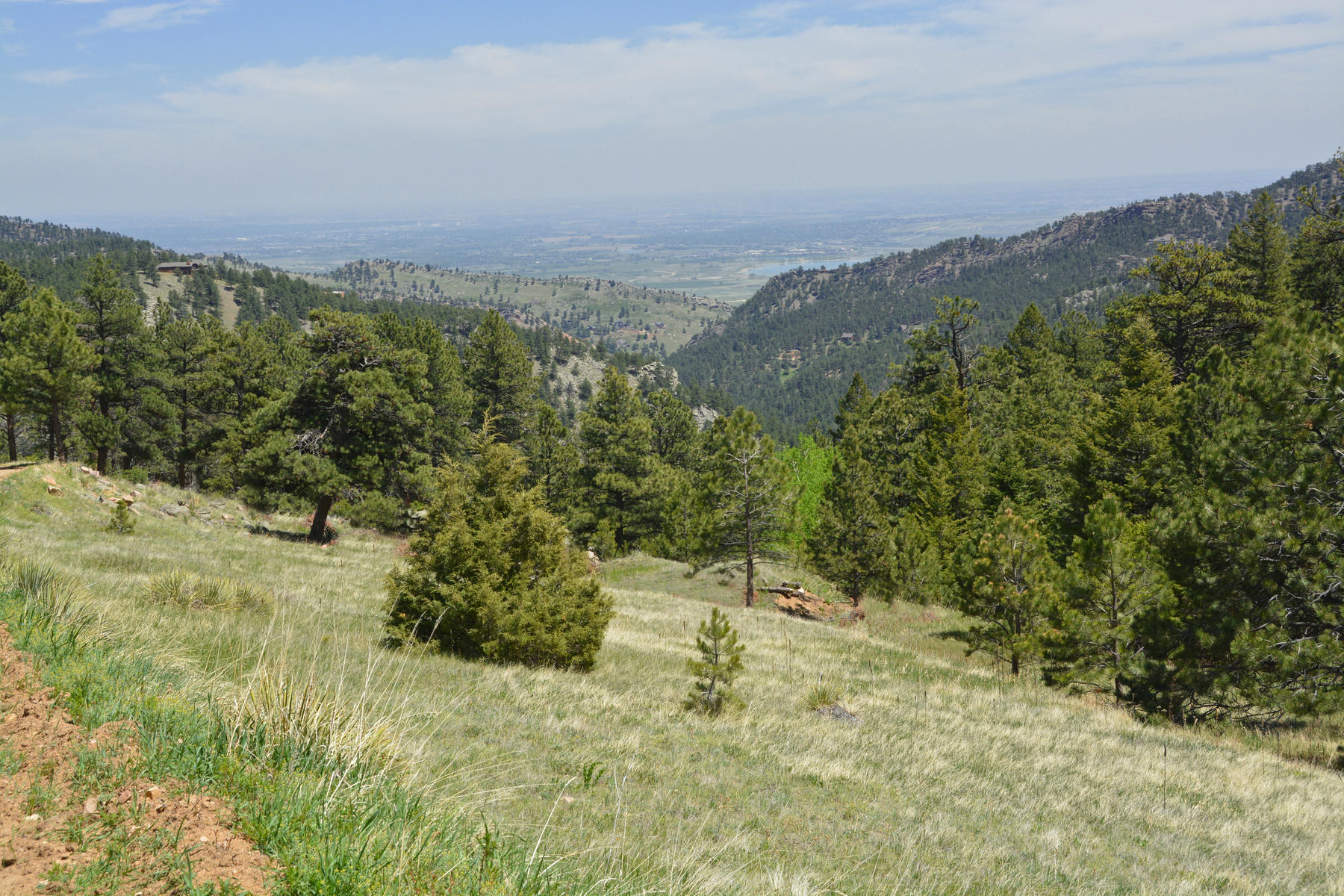 Земля для того Продажа на 42 Acres On Bald Mountain 0 Sunshine Canyon Drive Boulder, Колорадо, 80302 Соединенные Штаты