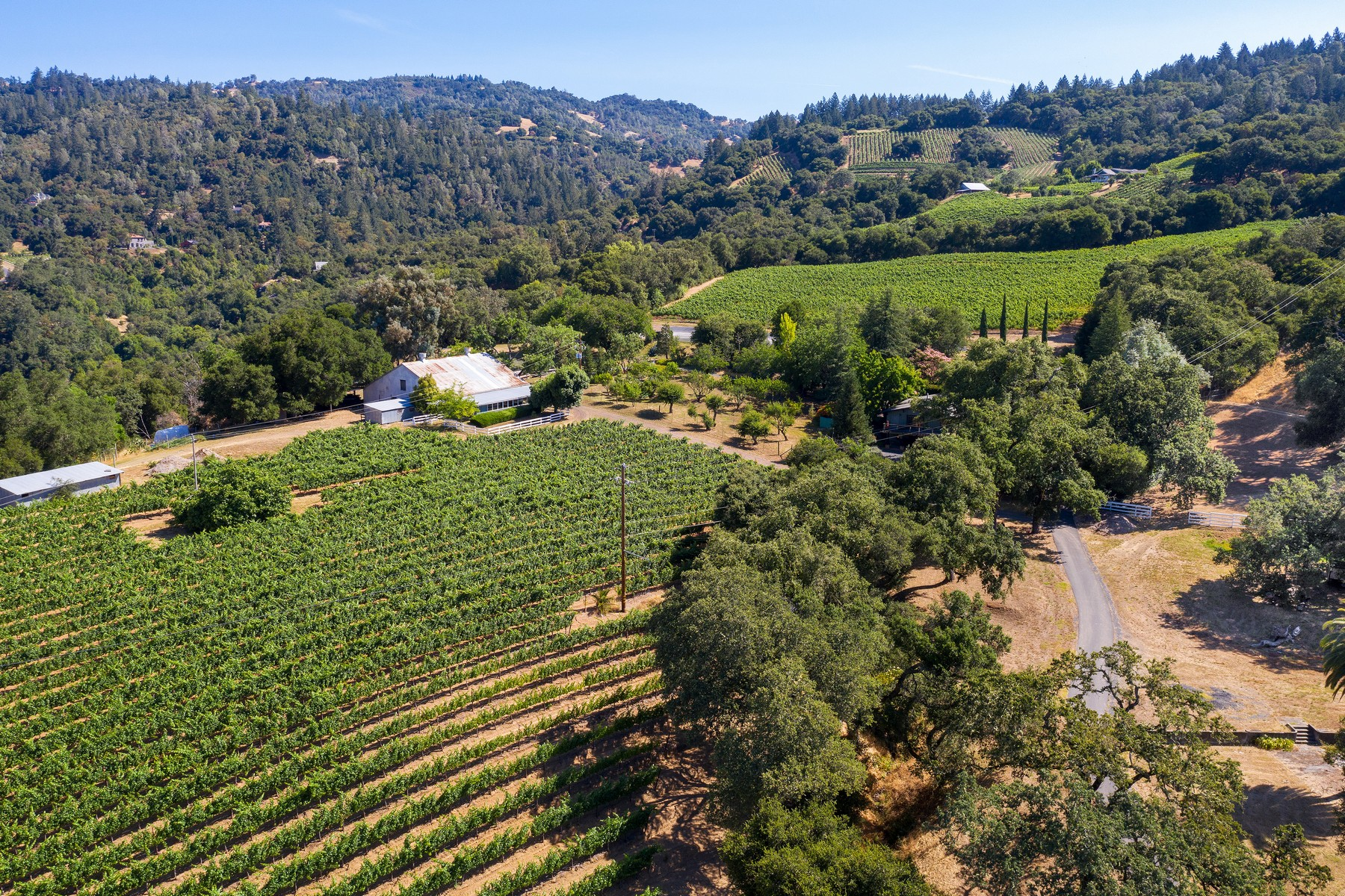 Vineyard Real Estate for Sale at Asti Wine Ranch 25900 Highland Ranch Road Cloverdale, California 95425 United States