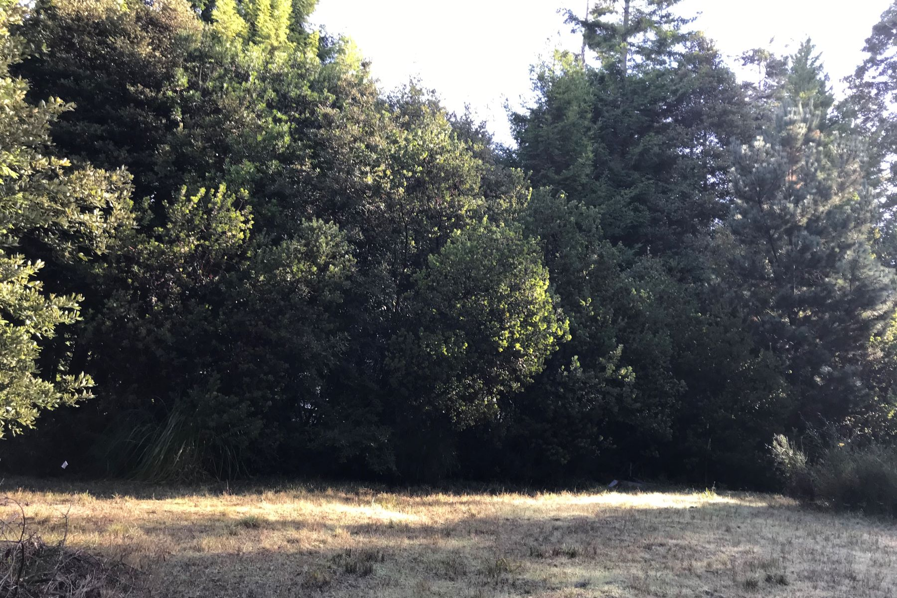 Land for Sale at Park-Like Setting 15750 Shane Drive Fort Bragg, California 95437 United States