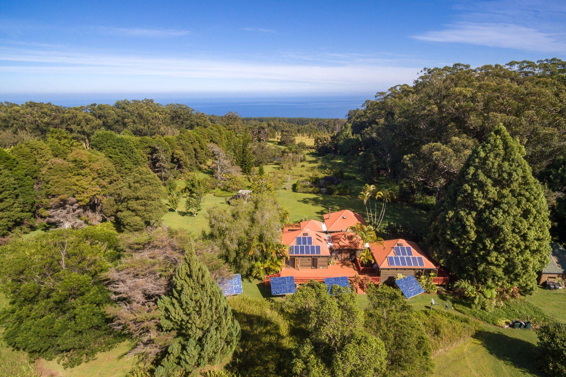獨棟家庭住宅 為 出售 在 ahualoa 45-3461 KAHANA DR Honokaa, 夏威夷 96775 美國