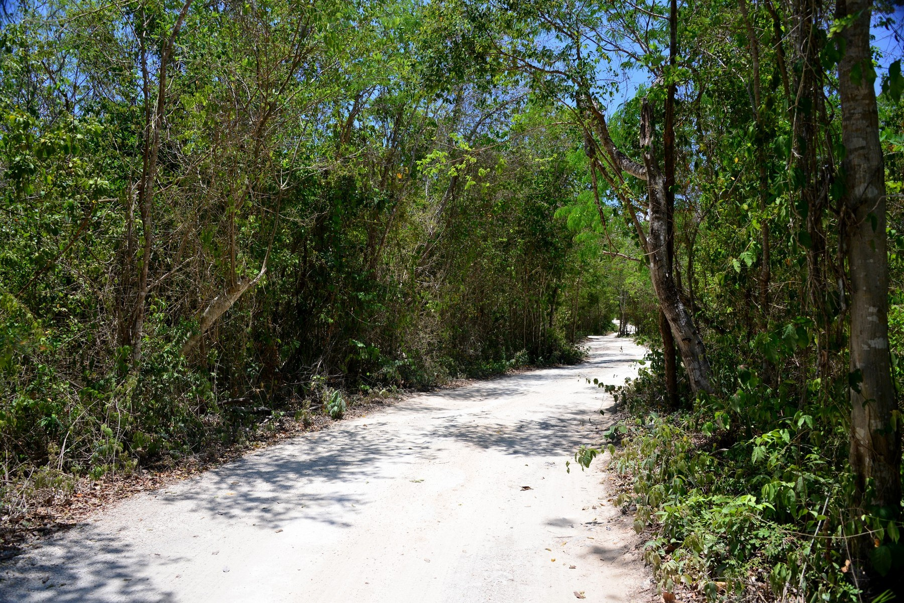 Land for Sale at LOTS 6 AND 7 8TH REGION LOTS 6 AND 7 8TH REGION Manzana 668 de la zona 8 Tulum, 77760 Mexico