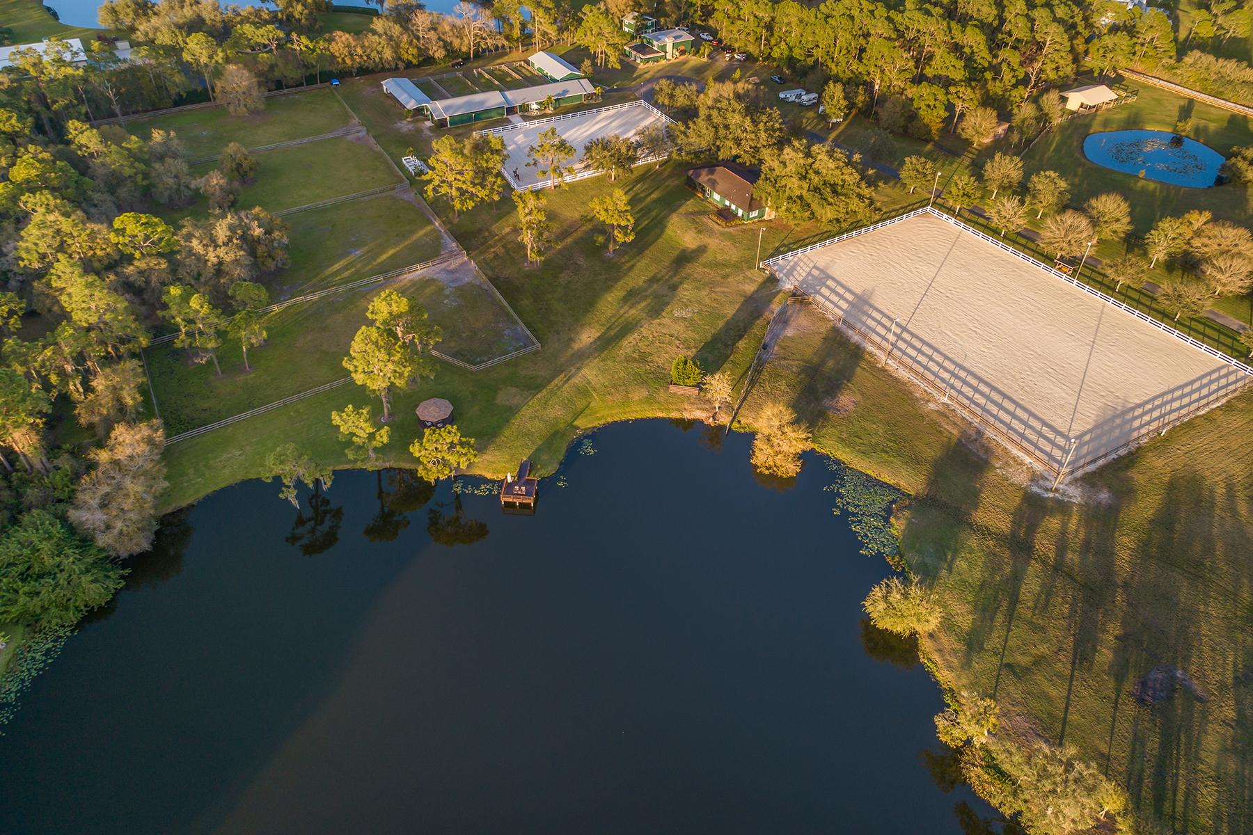Single Family Homes por un Venta en ROYAL OAK EQUESTRIAN CENTRE 9927 Fruitville Rd Sarasota, Florida 34240 Estados Unidos