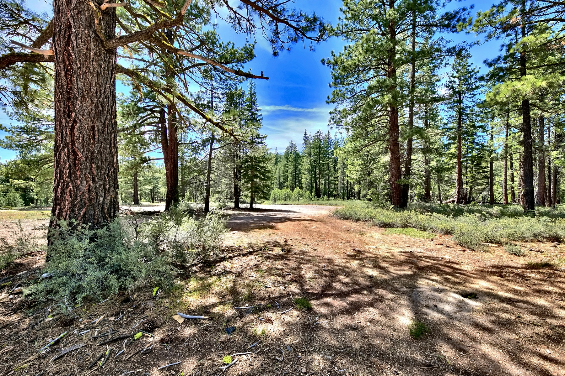 Additional photo for property listing at Unique 8.0 acre 11270 Trails End 特拉基, 加利福尼亚州 96161 美国