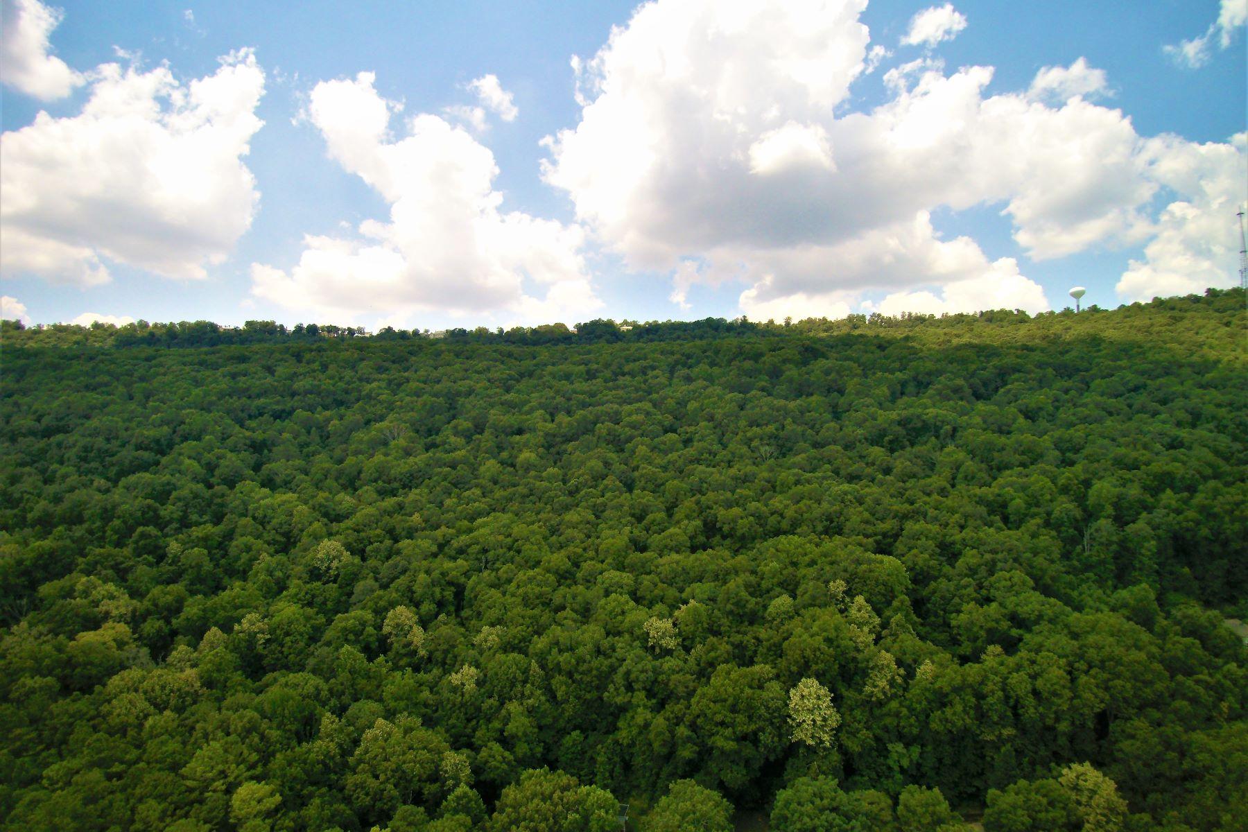 Terreno por un Venta en 0 Catherine Drive Huntsville, Alabama 35763 Estados Unidos