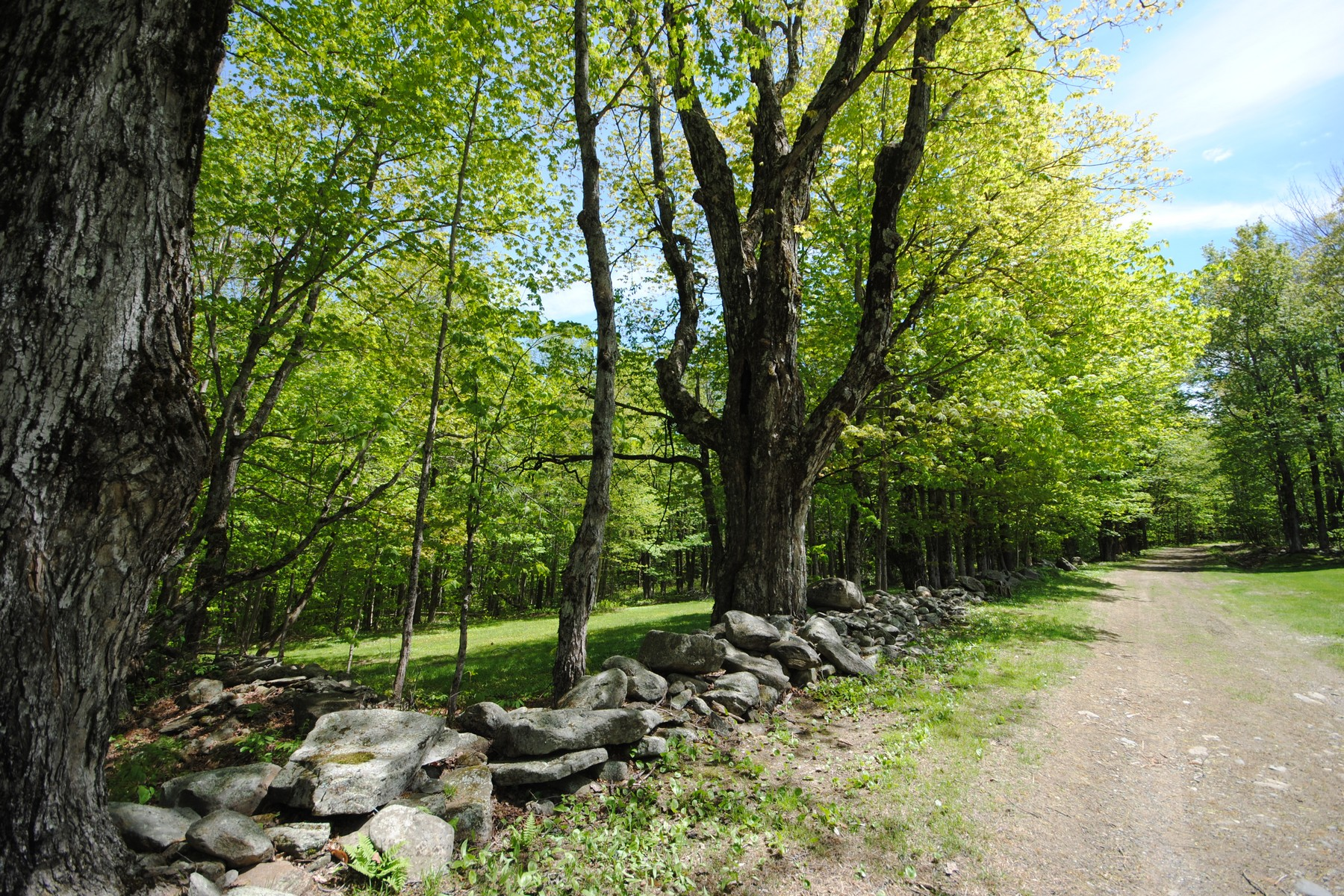 Land for Sale at Beautiful Country Property Lot on Fuller Hill Rd Whitingham, Vermont 05361 United States