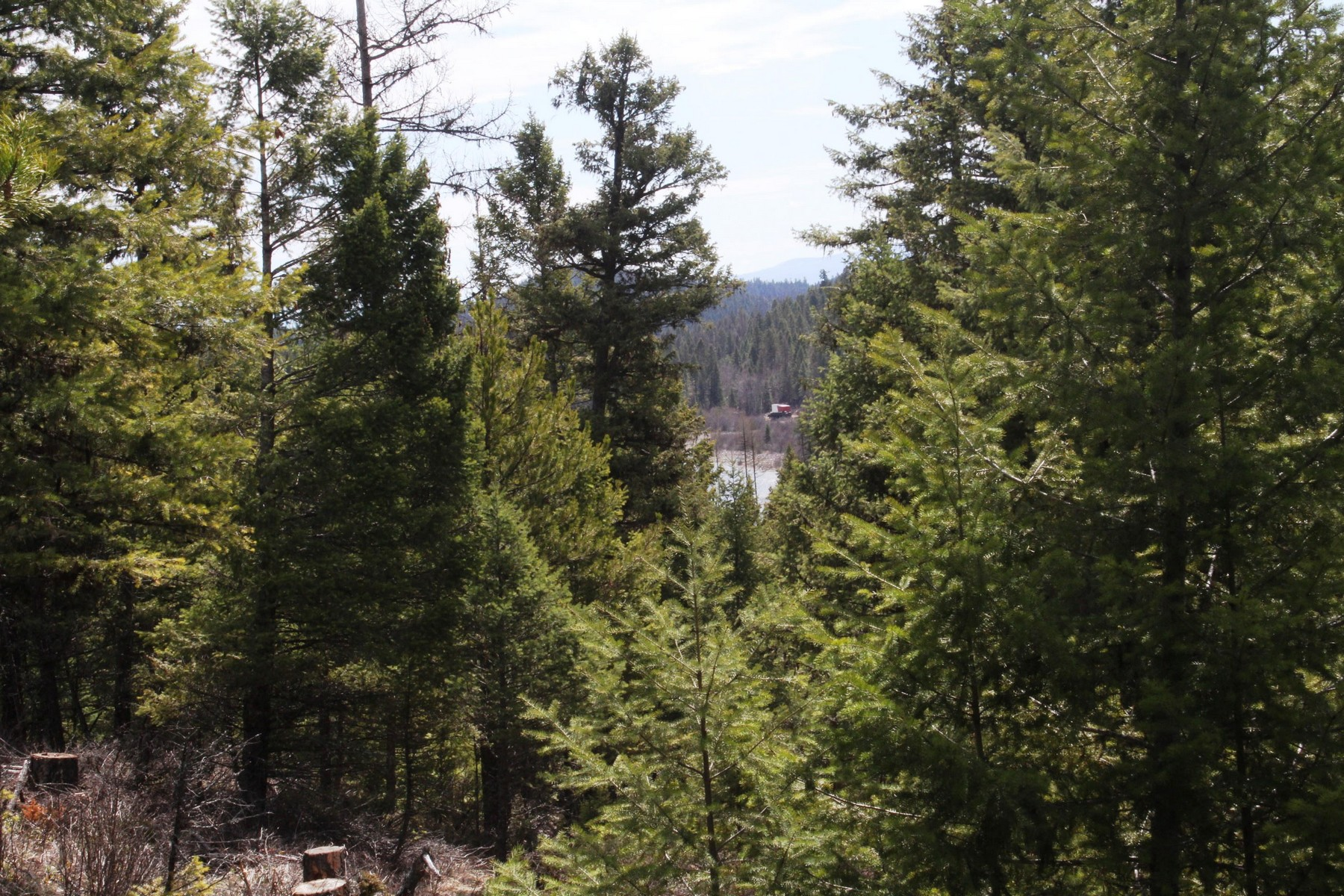 Additional photo for property listing at Nhn Twin Lakes Rd , Whitefish, MT 59937 Nhn  Twin Lakes Rd Whitefish, Montana 59937 United States