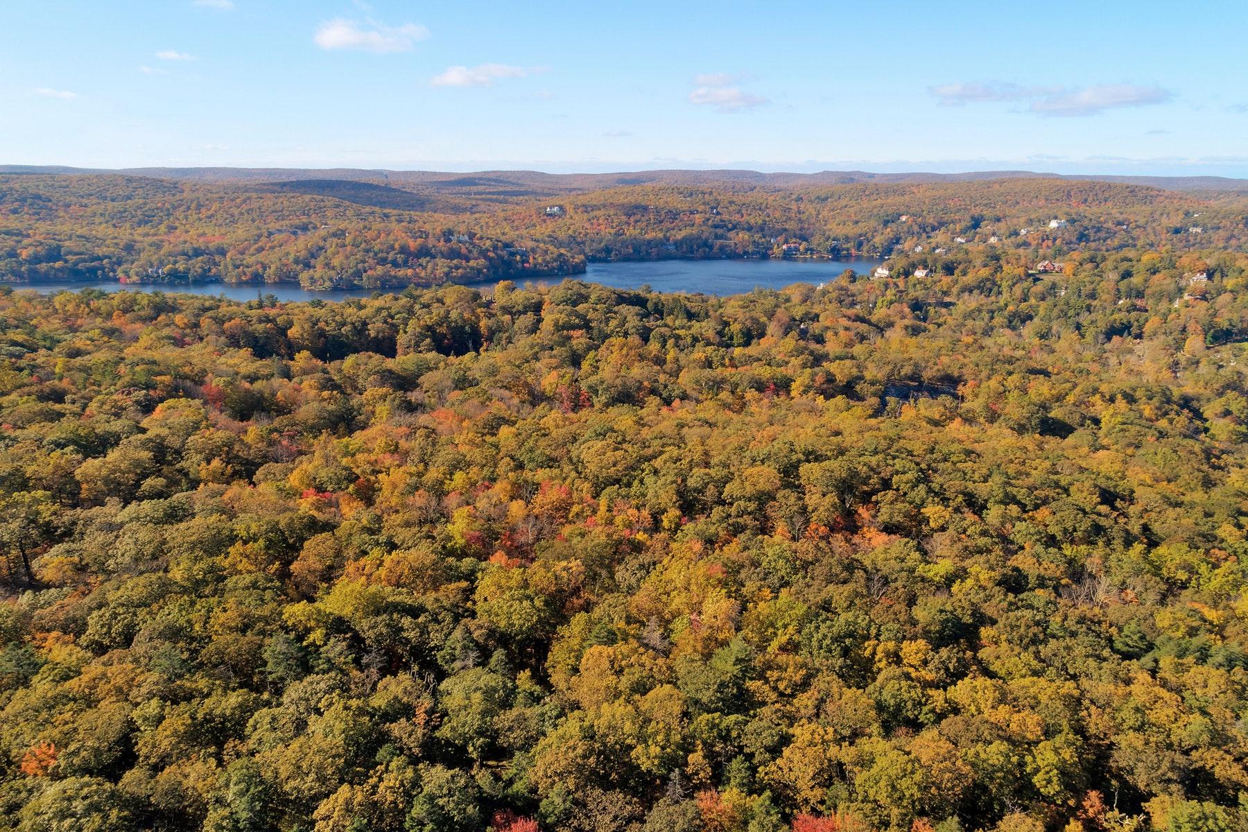 土地 為 出售 在 Breathtaking 25 Acre Parcel Pine Hill Road, Tuxedo Park, 纽约 10987 美國