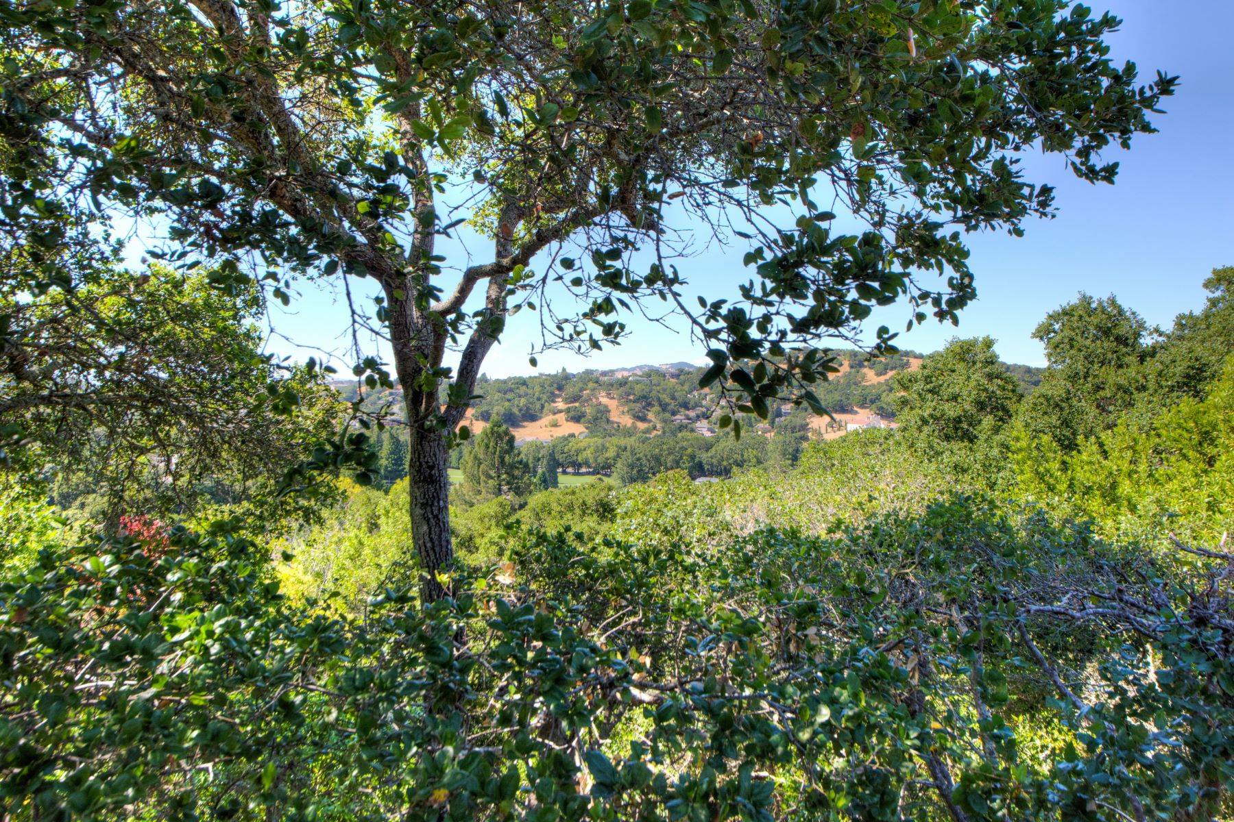 Additional photo for property listing at Wonderful View Home in Marin Country Club 125 Pebble Beach Drive Novato, カリフォルニア 94949 アメリカ合衆国