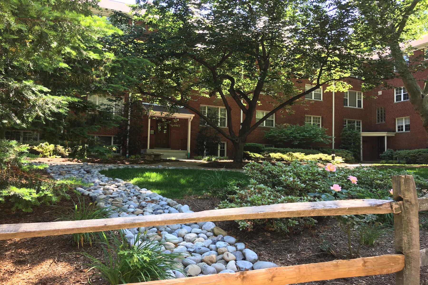Appartement en copropriété pour l à louer à Rosslyn 1425 Nash Street N 17 Arlington, Virginia 22209 États-Unis