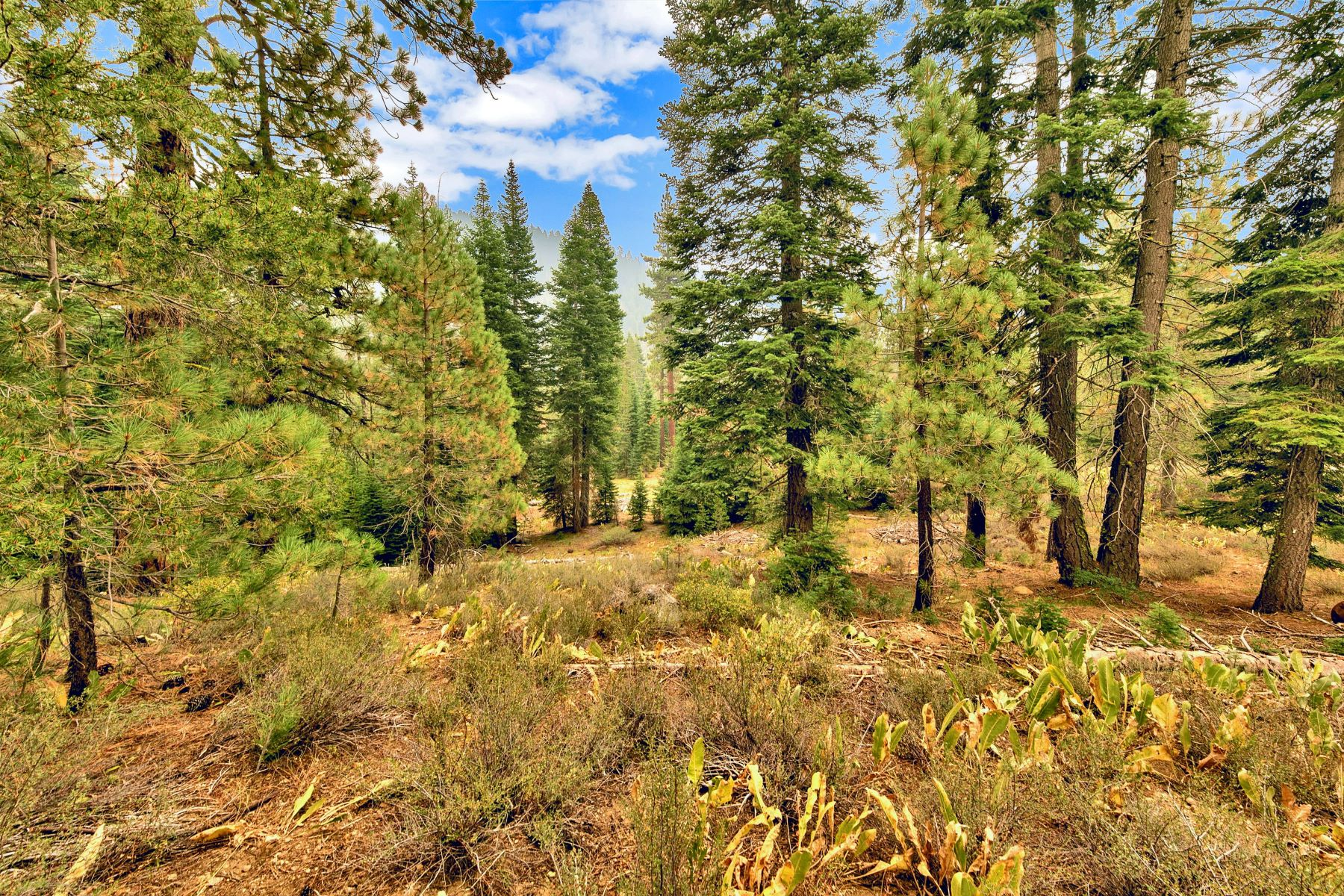 Additional photo for property listing at Squaw Valley Ski Area One Acre Lot 132 Rock Garden Court Olympic Valley, California 96146 United States