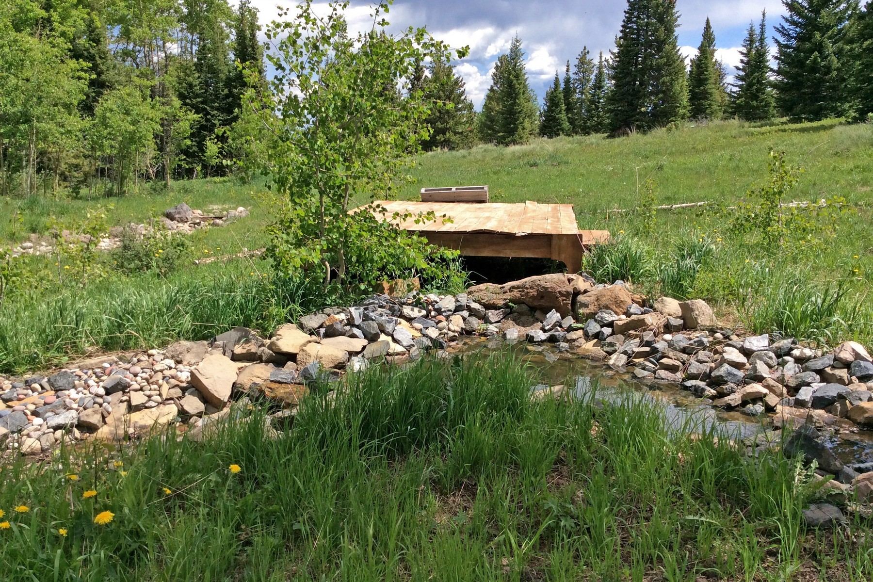 Additional photo for property listing at StageStop Ranch at Five Pines Mesa 8925 Bearpaw Trail, Yampa, Колорадо 80483 Соединенные Штаты