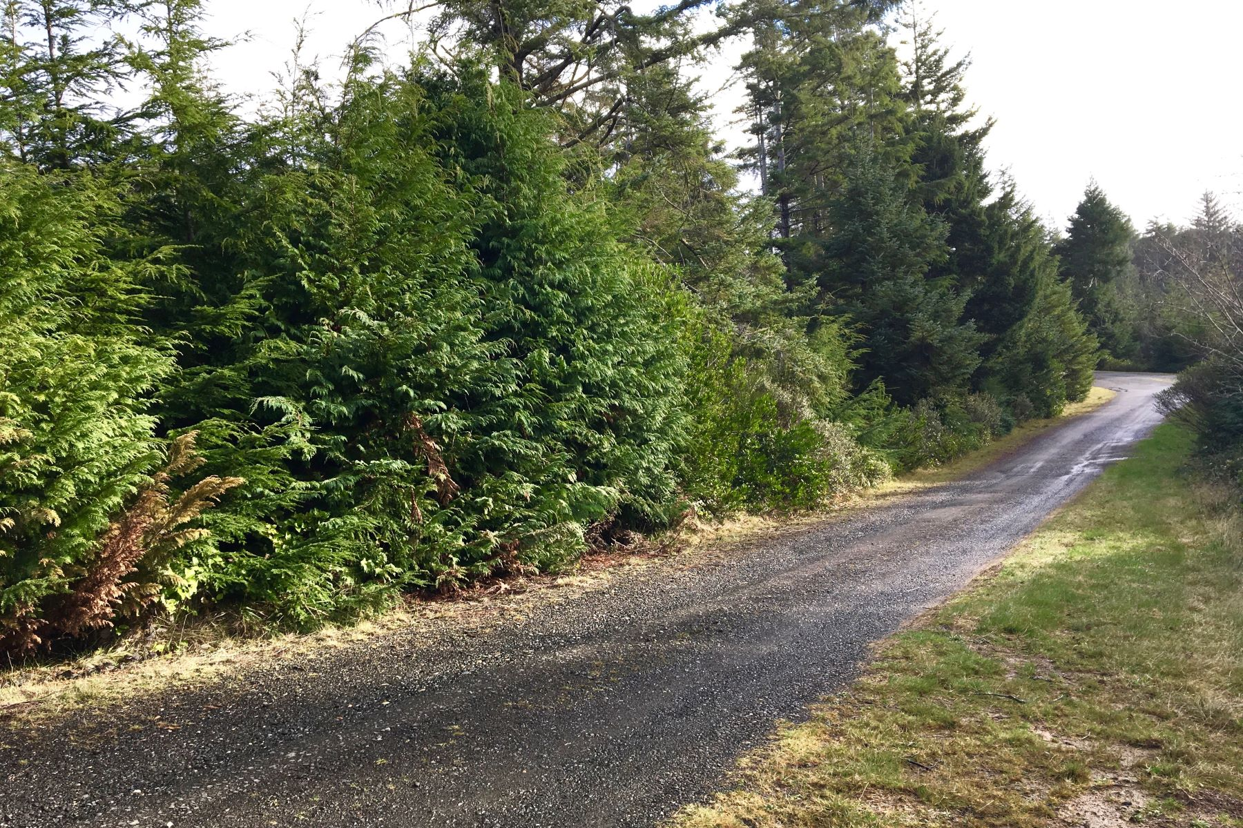 Land for Sale at Tranquil Forest Lots 0 Sacchi Ln, Bandon, Oregon, 97411 United States