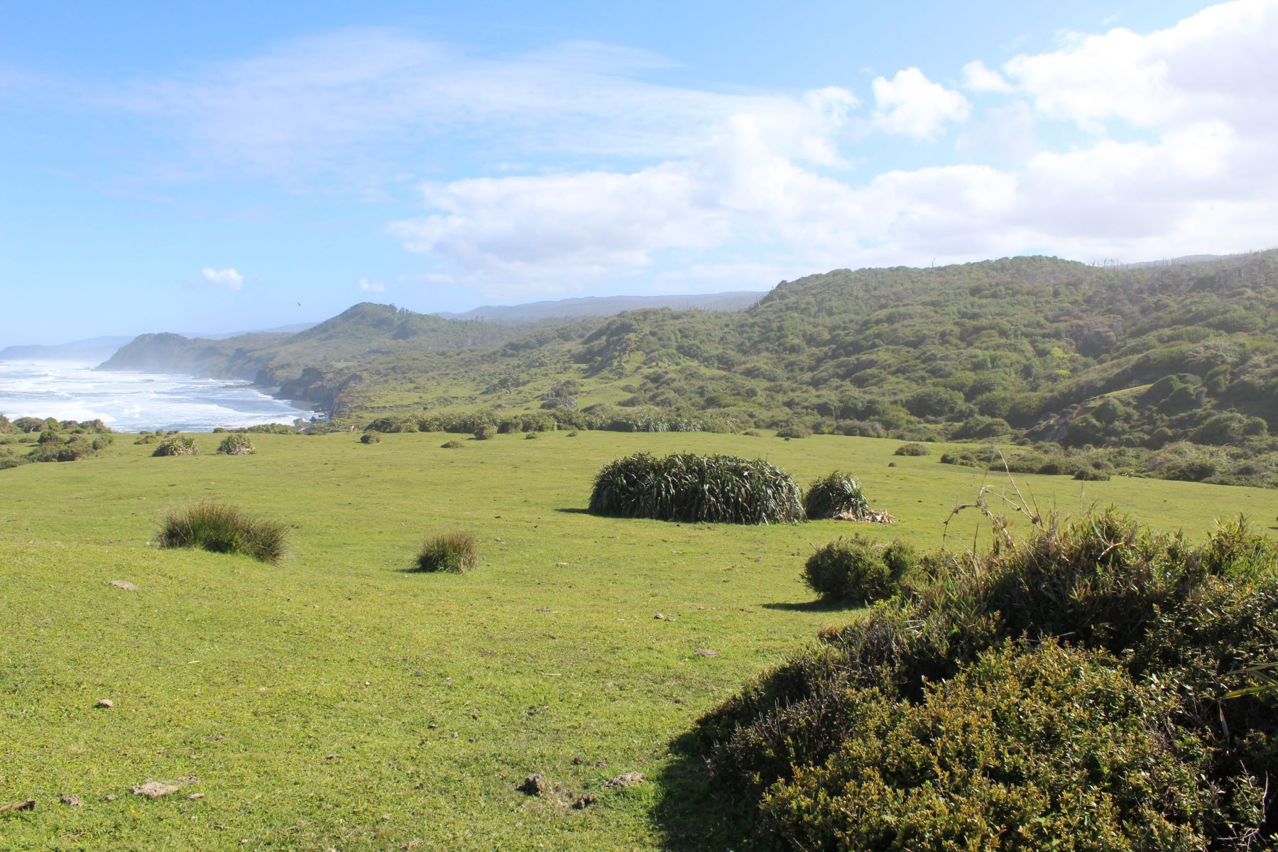 Additional photo for property listing at Fresia, Puerto Montt, Los Lagos 智利