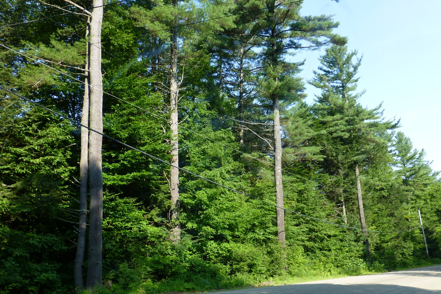 Land for Sale at Wooded Lot with Pretty Stone Wall Taft Rd 52 Townshend, Vermont 05353 United States