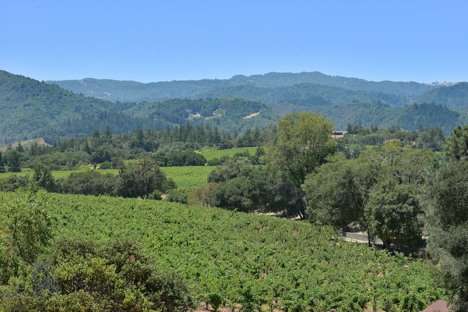 Farm / Ranch / Plantation for Sale at Carreras Family Caboose Vineyard 22700 Walling Rd Geyserville, California 95441 United States