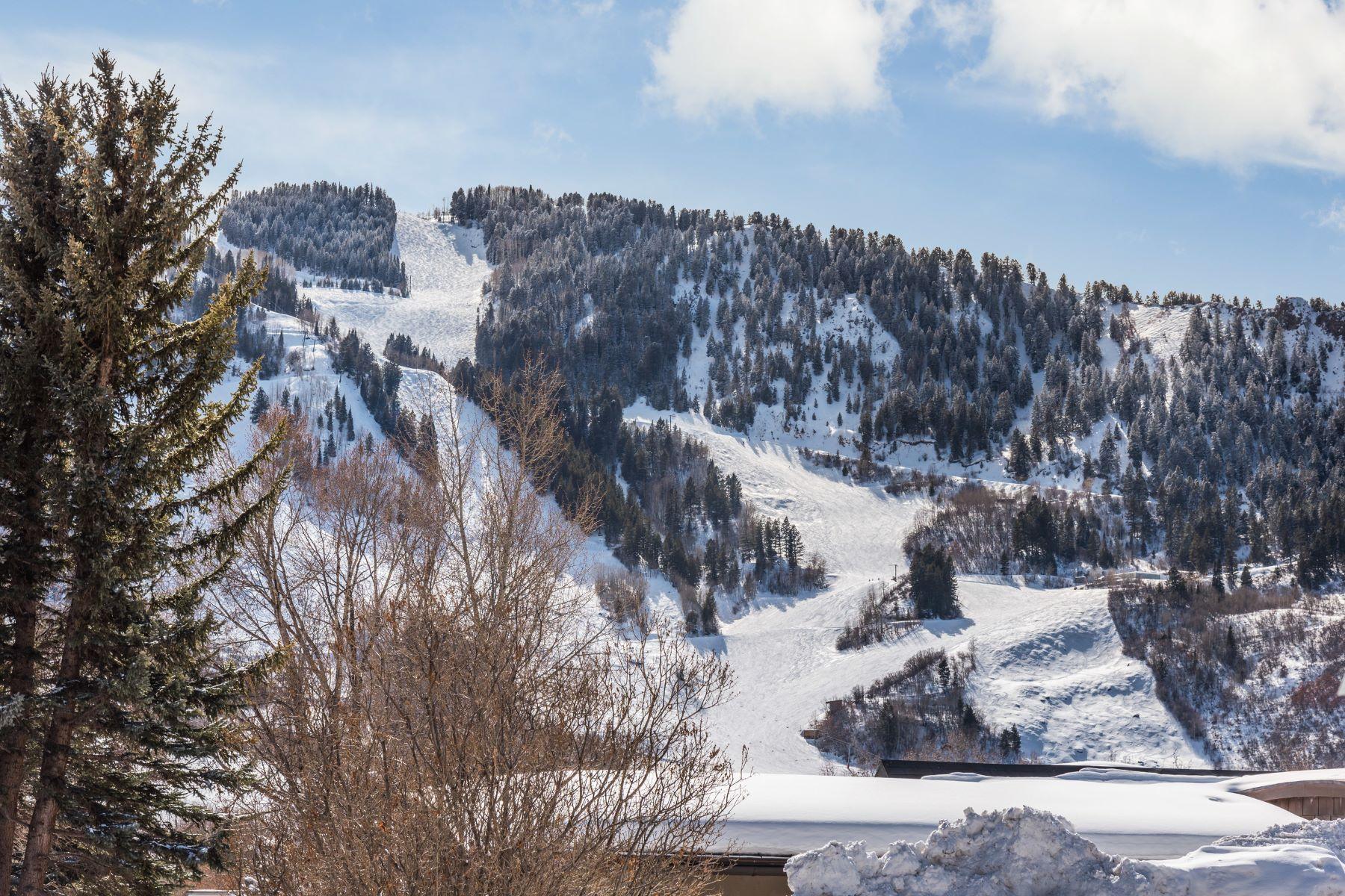 Частный односемейный дом для того Продажа на Perfect Location, Just Minutes to Aspen's Downtown Core 202 Cottonwood Lane, Aspen, Колорадо, 81611 Соединенные Штаты