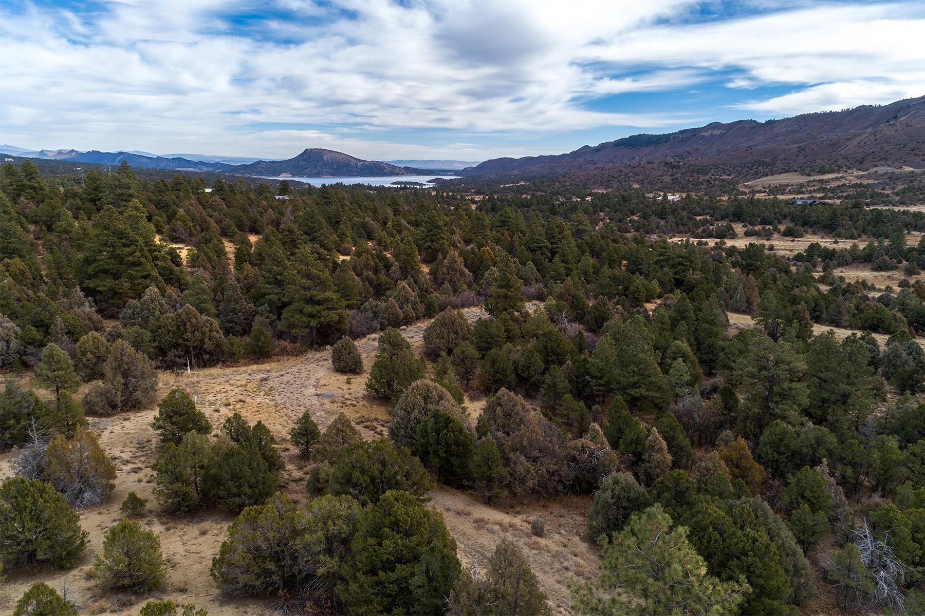 土地 のために 売買 アット PRIVATE OASIS AT TRAPPERS CROSSING TBD CR 211 Hesperus, コロラド 81326 アメリカ