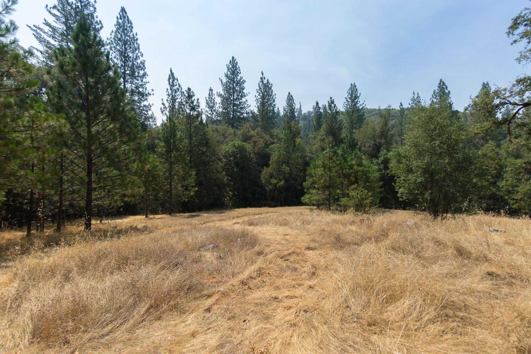 土地 のために 売買 アット East Clinton Jackson, カリフォルニア 95642 アメリカ合衆国
