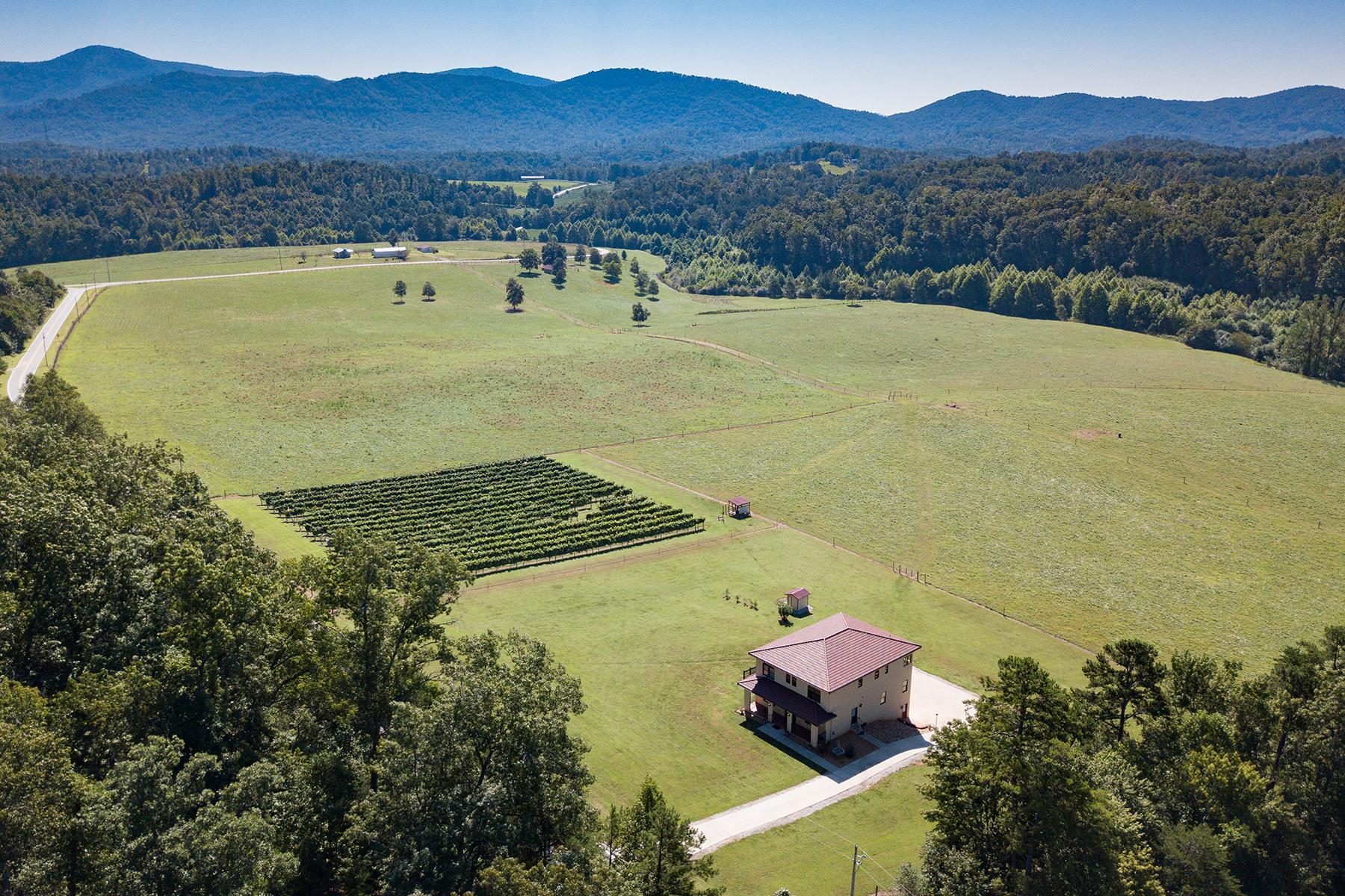 Φάρμα/ράντσο/φυτεία για την Πώληση στο NEBO 1418 Landis Ln, Nebo, Βορεια Καρολινα 28761 Ηνωμένες Πολιτείες