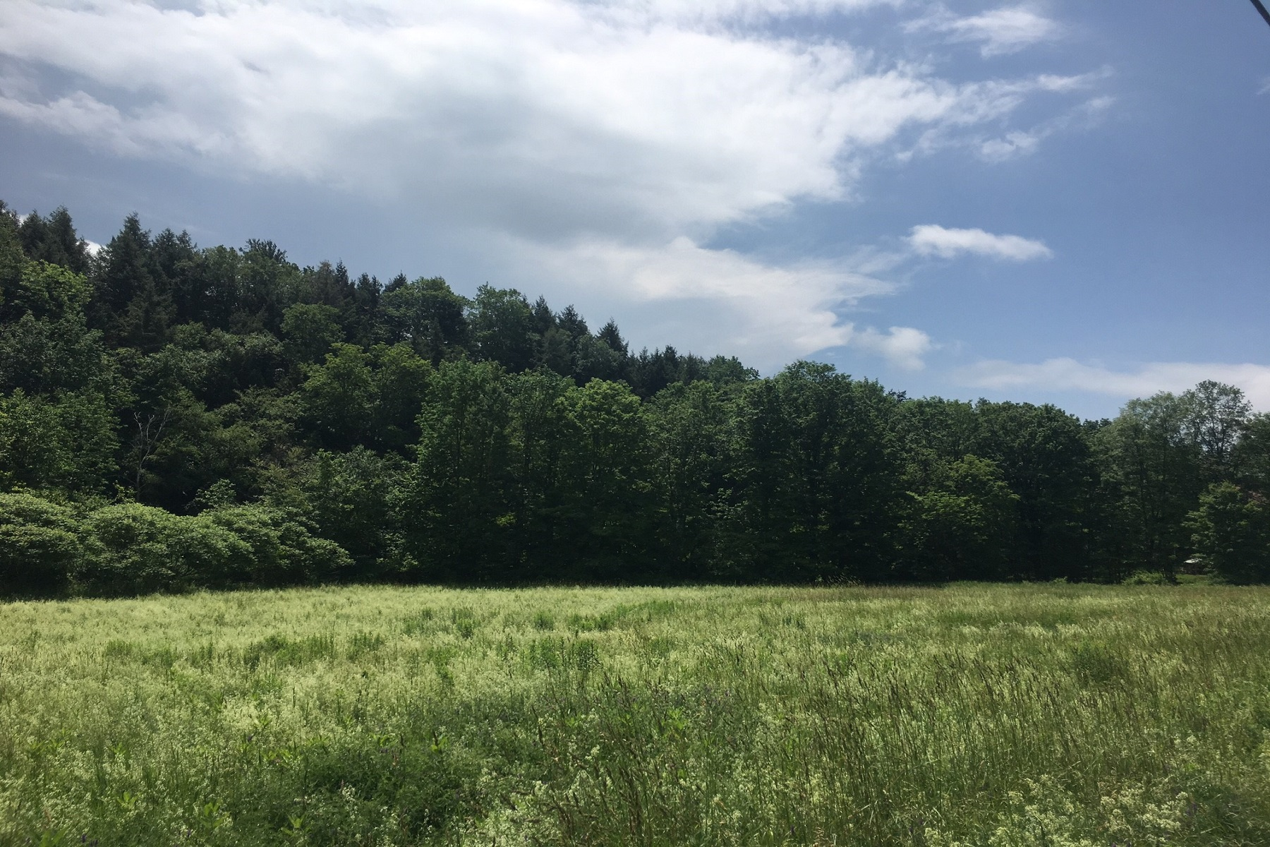 Land for Sale at Property at the Foot of Mt. Ascutney 0000 Rt. 44 West Windsor, Vermont, 05037 United States