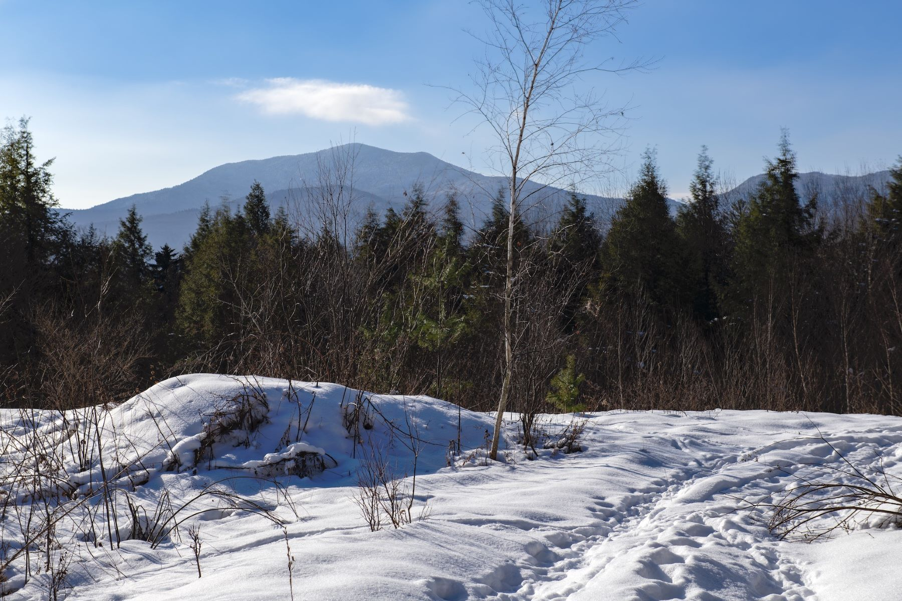 Land for Sale at TBA Plot Road, Johnson TBA Plot Rd Johnson, Vermont 05656 United States