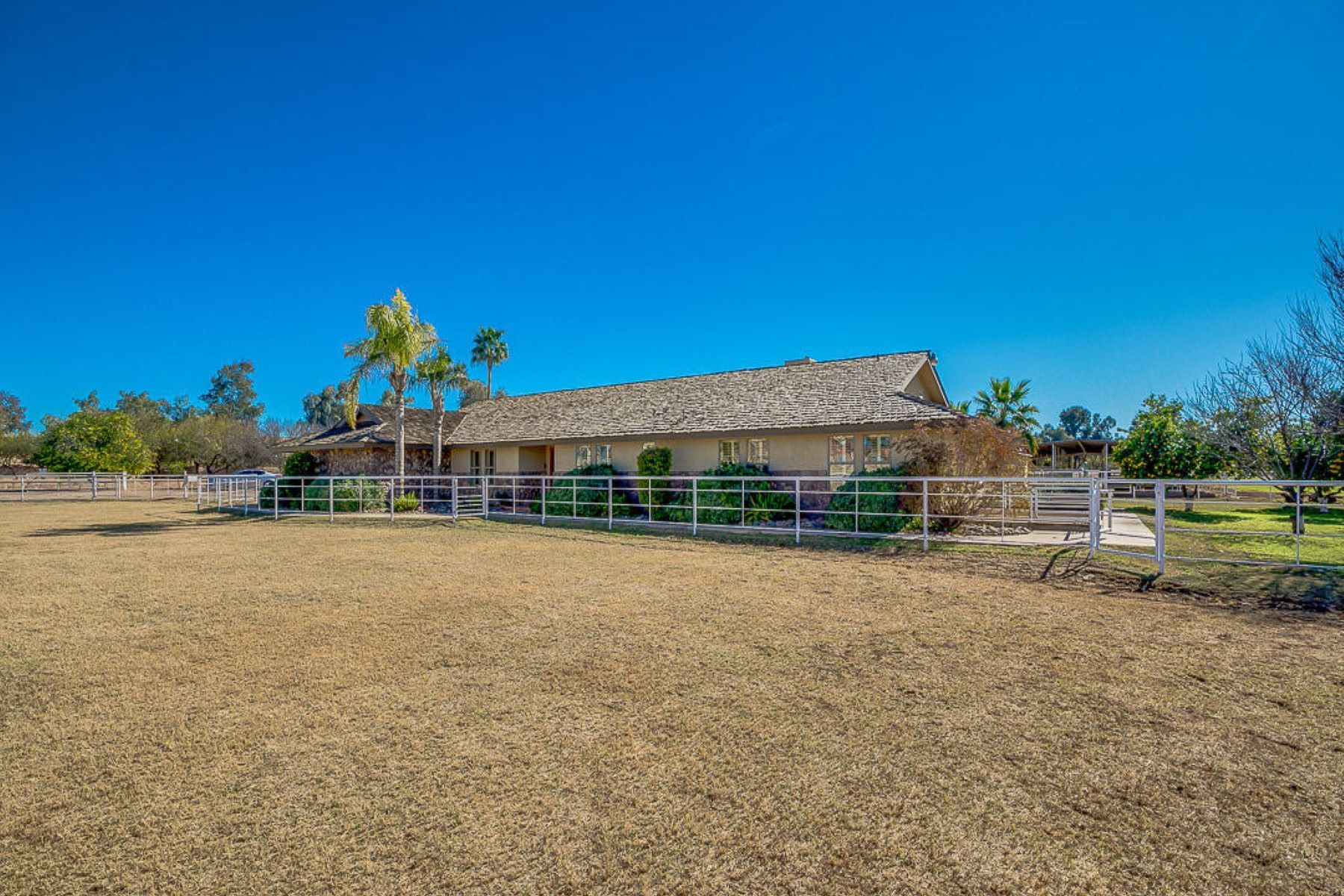 Single Family Homes for Active at Prime Chandler Horse Ranch 1625 E PECOS RD Chandler, Arizona 85225 United States
