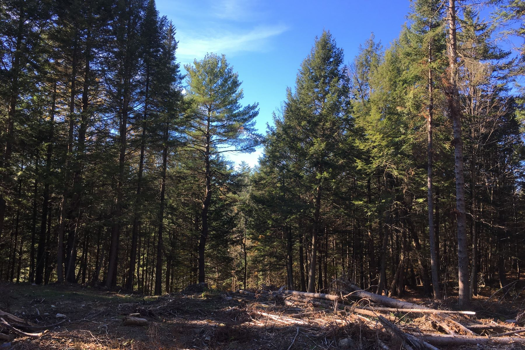 Land for Sale at Ten Acres in Newbury Tyler Farm Rd Newbury, Vermont 05051 United States