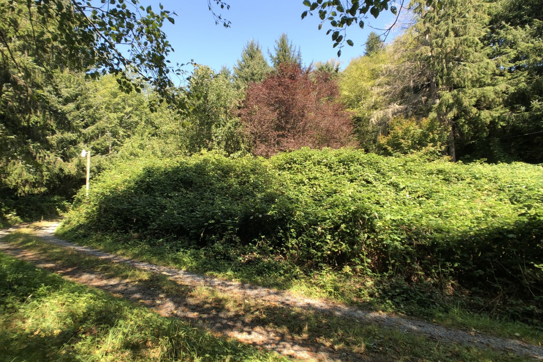 Land for Active at 36450 Pacific Palisades Pl Nehalem 36450 Pacific Palisades Pl Nehalem, Oregon 97131 United States