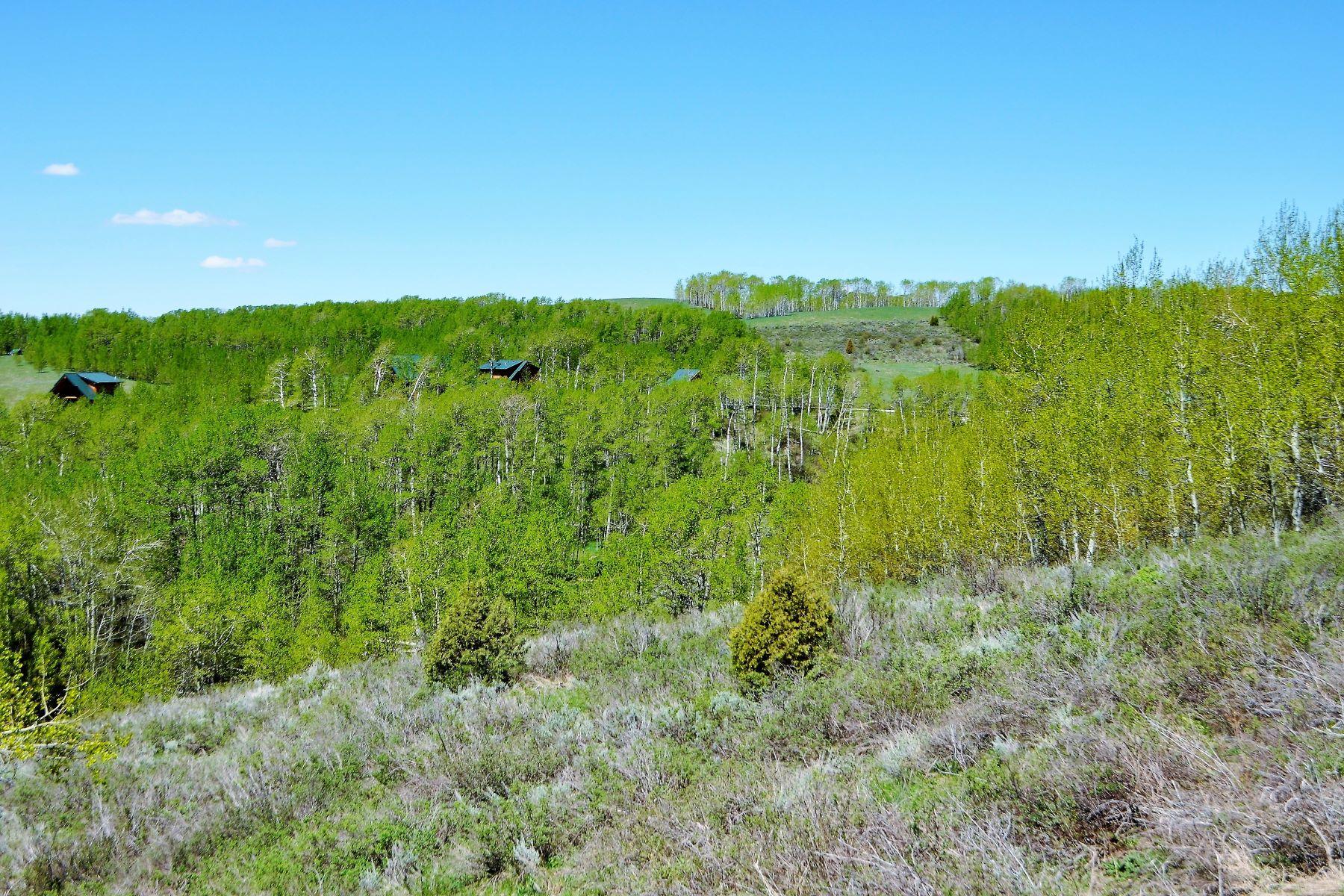 Terreno por un Venta en Elevated and Treed Building Site 10580 Snowy Lane Tetonia, Idaho, 83452 Jackson Hole, Estados Unidos