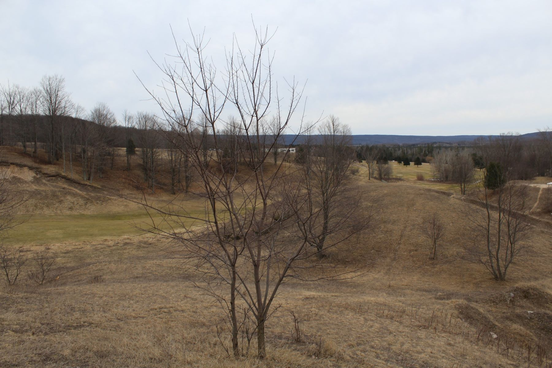 Terrain pour l Vente à Scenic Golf Course Acreage 05775 Springvale Road Boyne Falls, Michigan, 49713 États-Unis