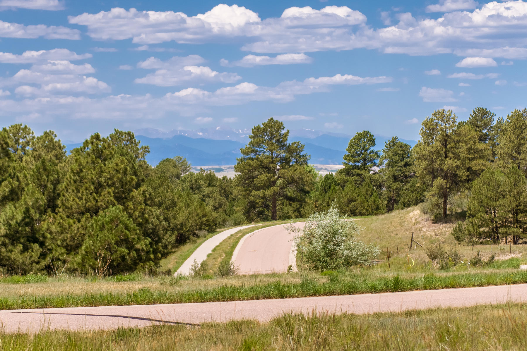 Additional photo for property listing at 7983 Forest Keep Cir 7983 Forest Keep Cir Parker, Colorado 80134 United States