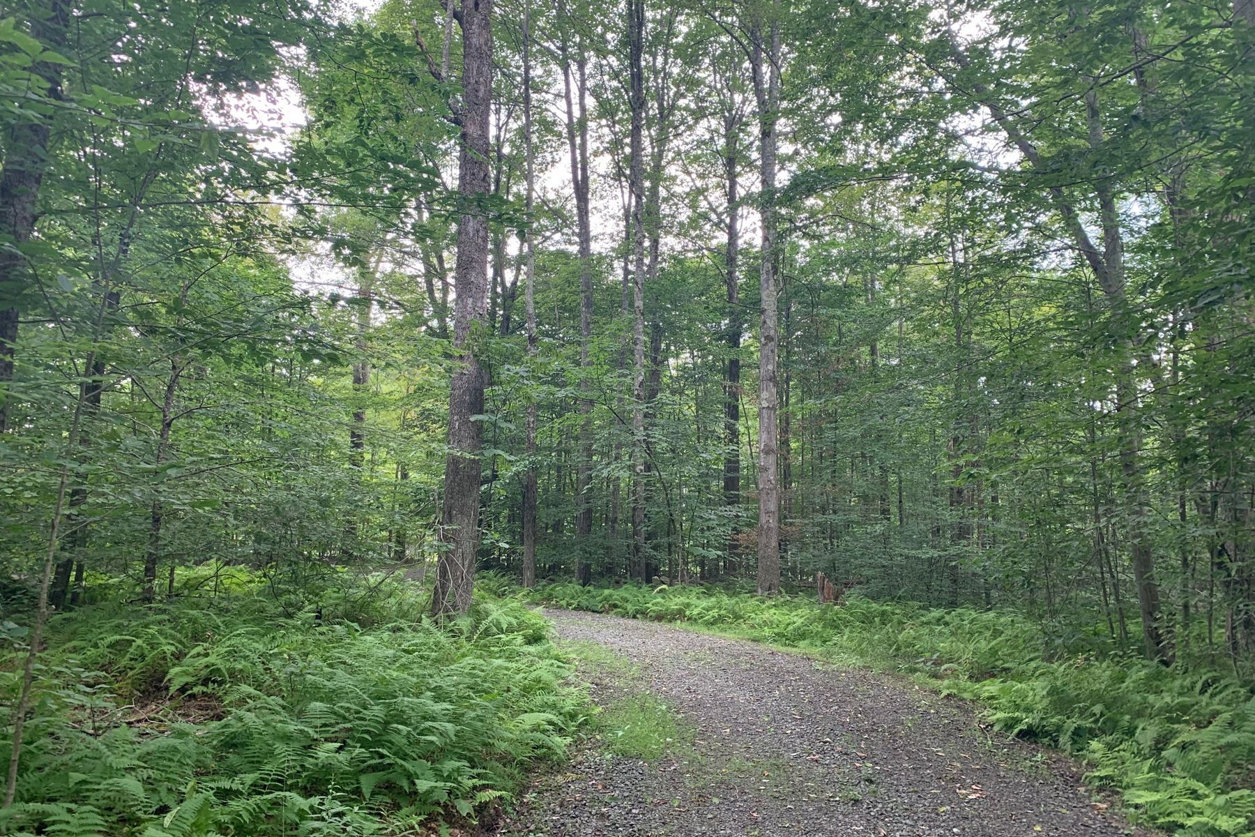 Land for Active at Spectacular Lot at the Chapin Estate. TRI Lot 39 Chapin Trail Bethel, New York 12720 United States