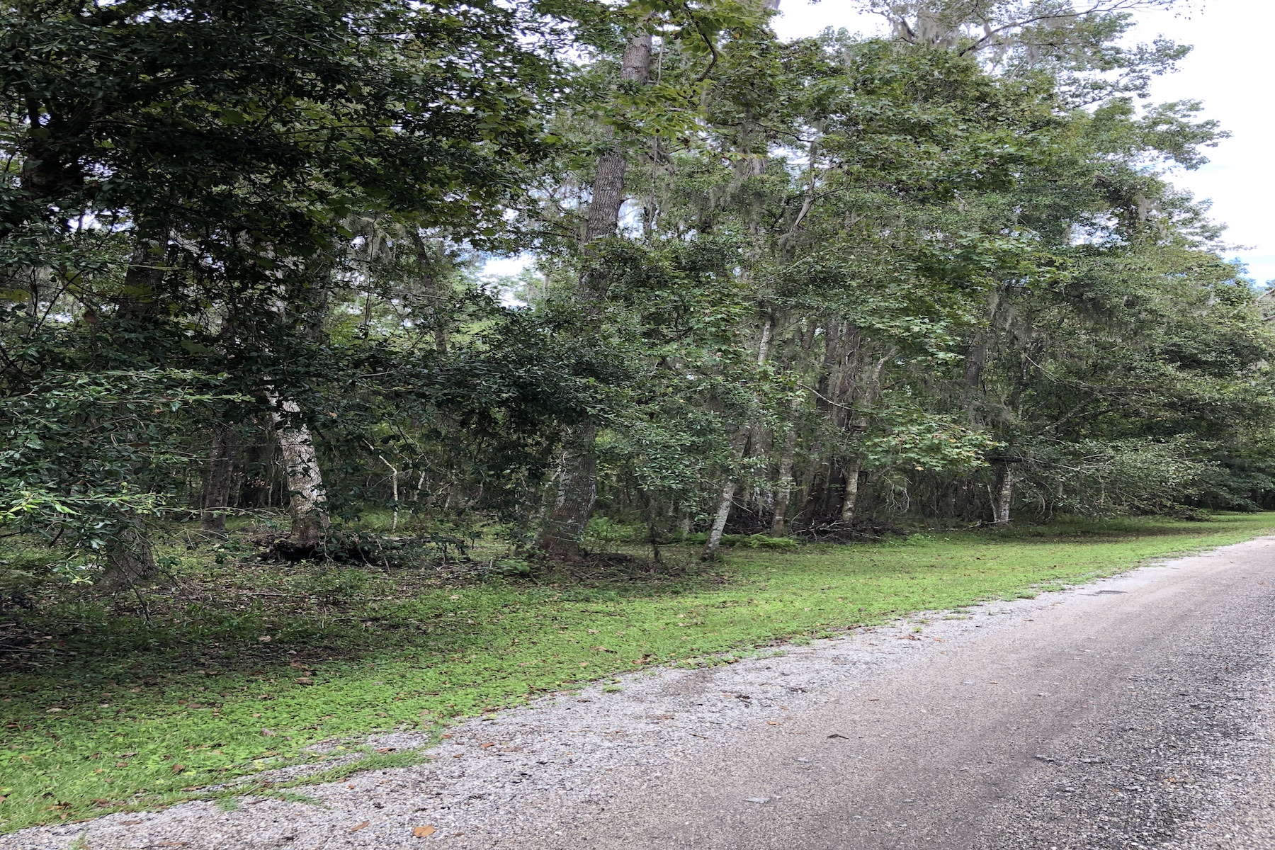 Land for Sale at Vacant Land 00 Monterey Bay Lane Green Cove Springs, Florida 32043 United States