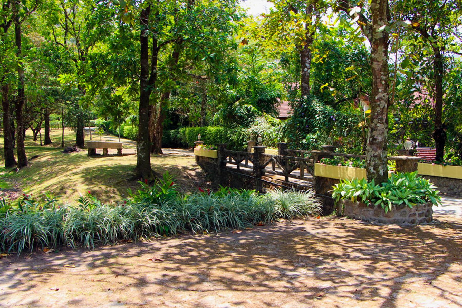 Farm / Ranch / Plantation for Sale at Casa de Campo, El Valle Panama City, Panama Panama