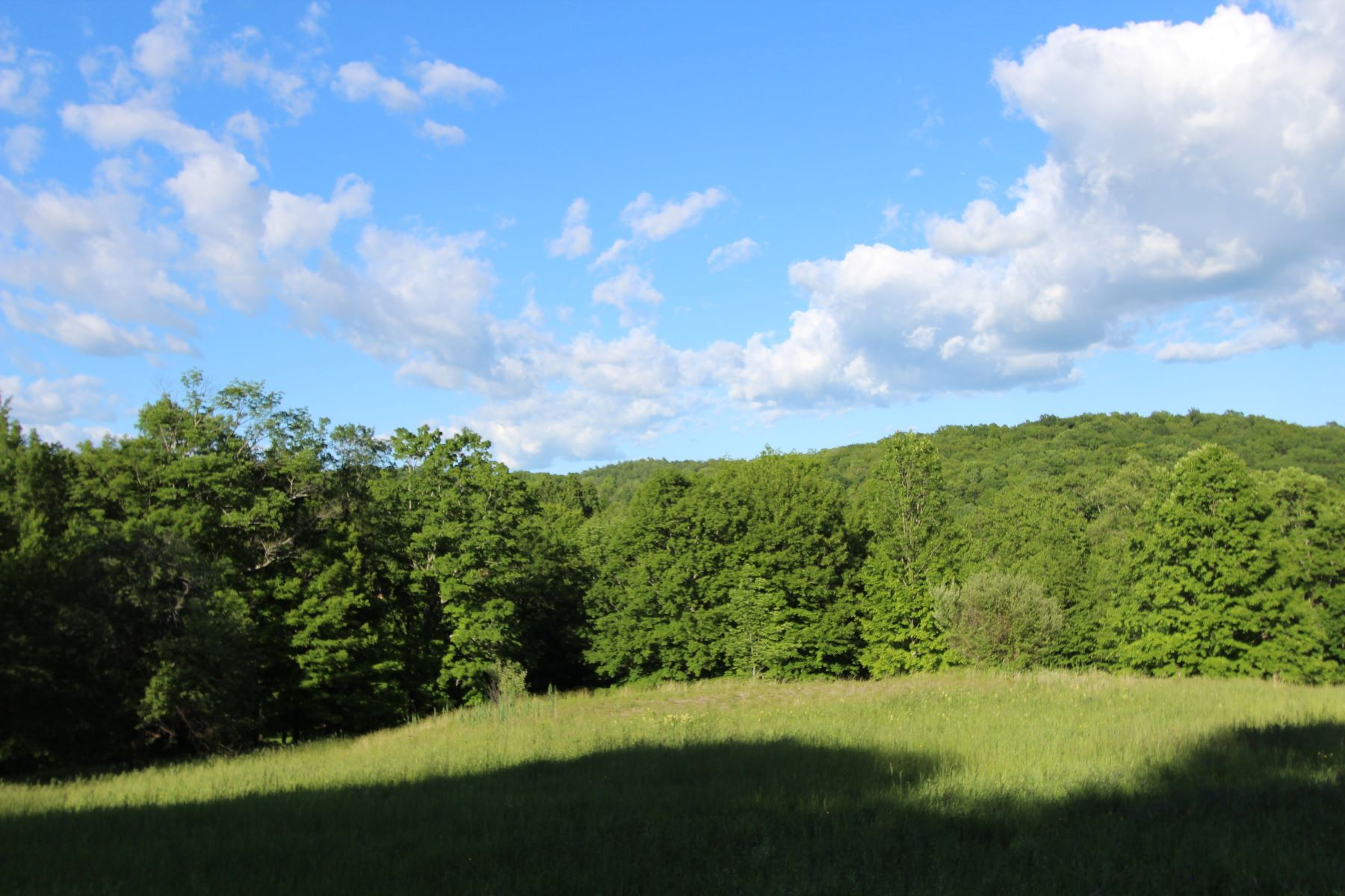 Land for Active at Land on Doodletown Road Ancram, New York 143 Doodletown Rd Ancram, New York 12502 United States