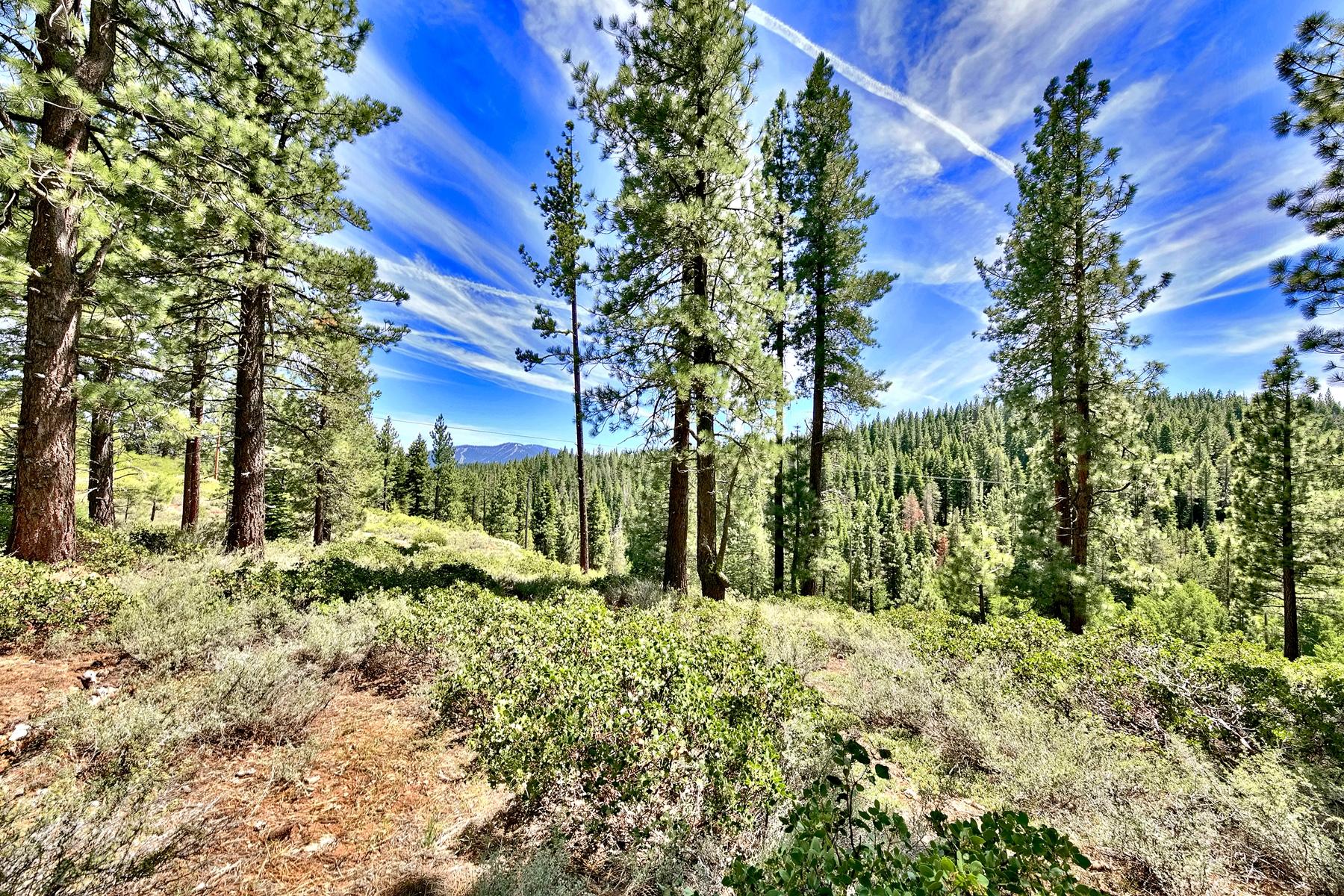 土地,用地 为 销售 在 Unique 8.0 acre 11270 Trails End 特拉基, 加利福尼亚州 96161 美国