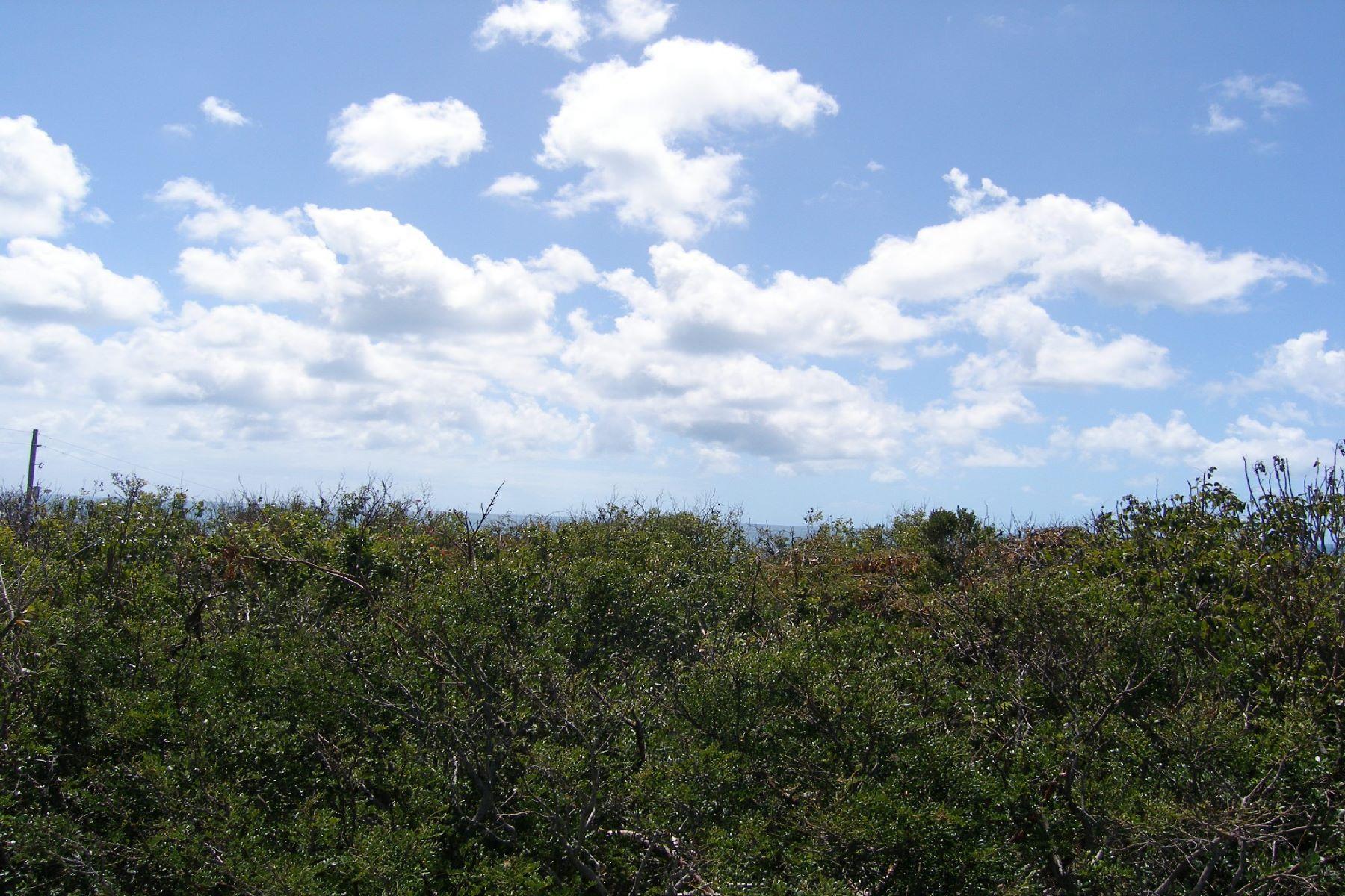 Đất đai vì Bán tại Ocean-view Lot Rainbow Bay, Eleuthera Bahamas