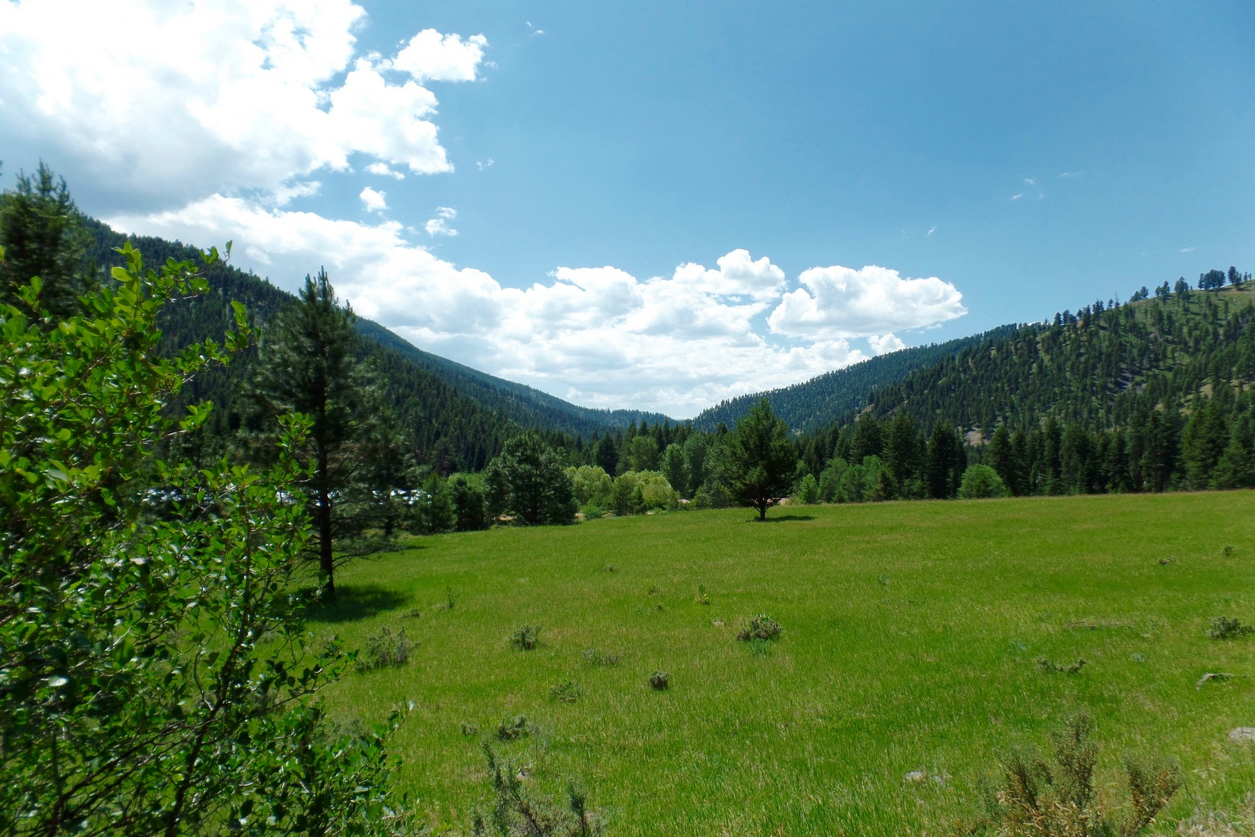 Land for Sale at Nhn East Fork Road , Sula, MT 59871 Nhn East Fork Rd Sula, Montana 59871 United States