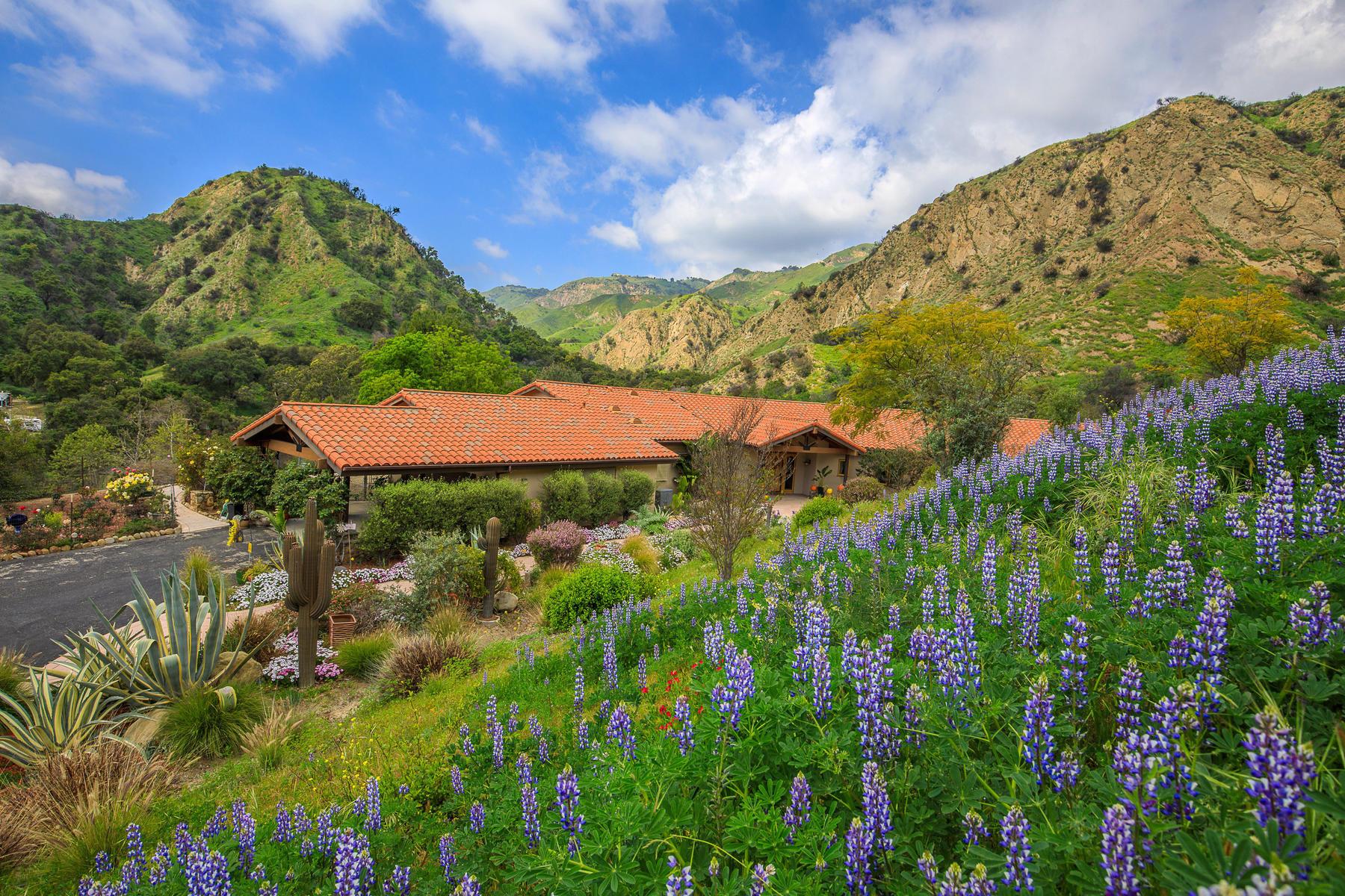 Single Family Homes for Sale at Liveoak Retreat 8577 Liveoak Avenue Santa Paula, California 93060 United States