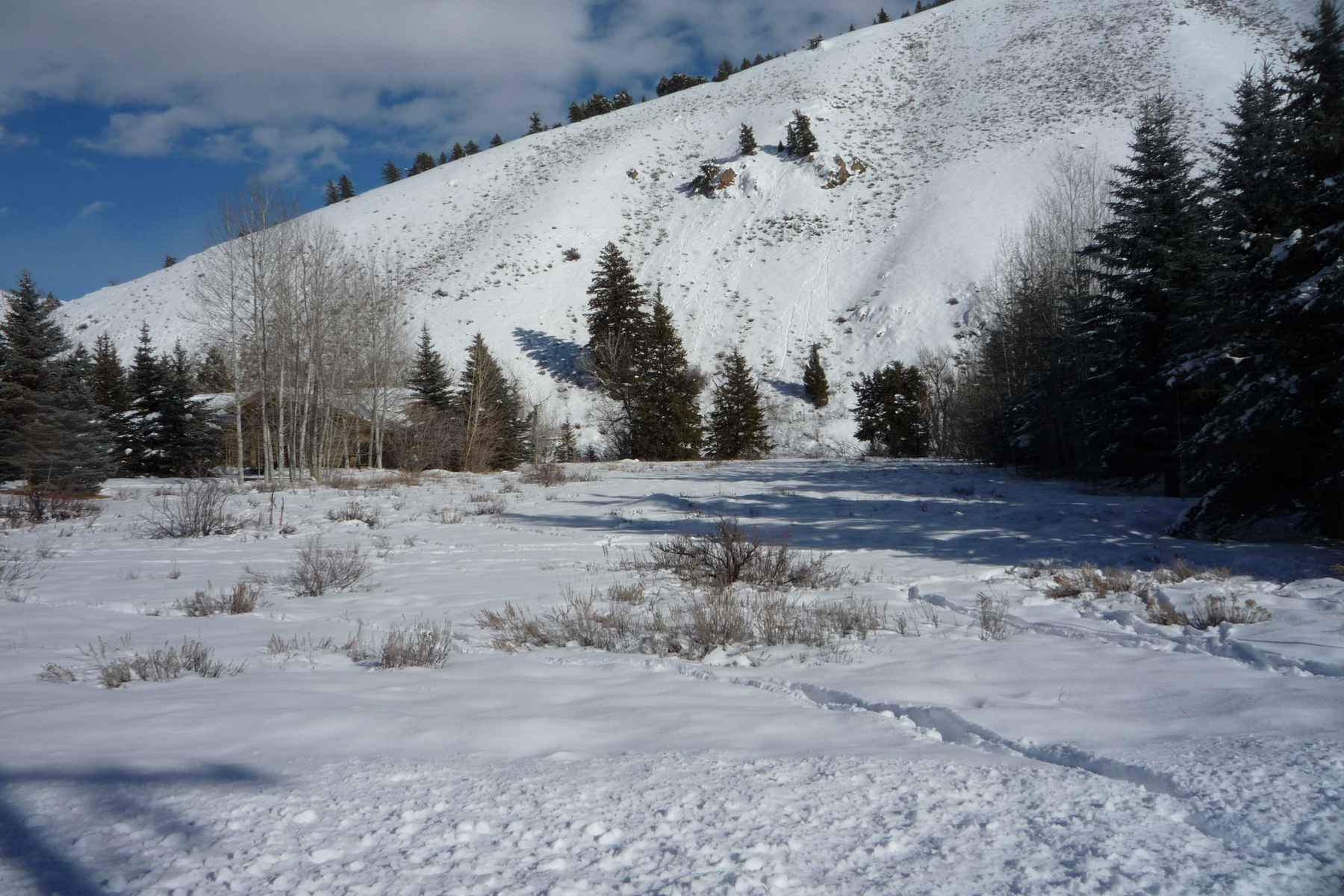 Additional photo for property listing at Big Wood River Lot 129 Audubon Place Ketchum, Idaho 83340 United States