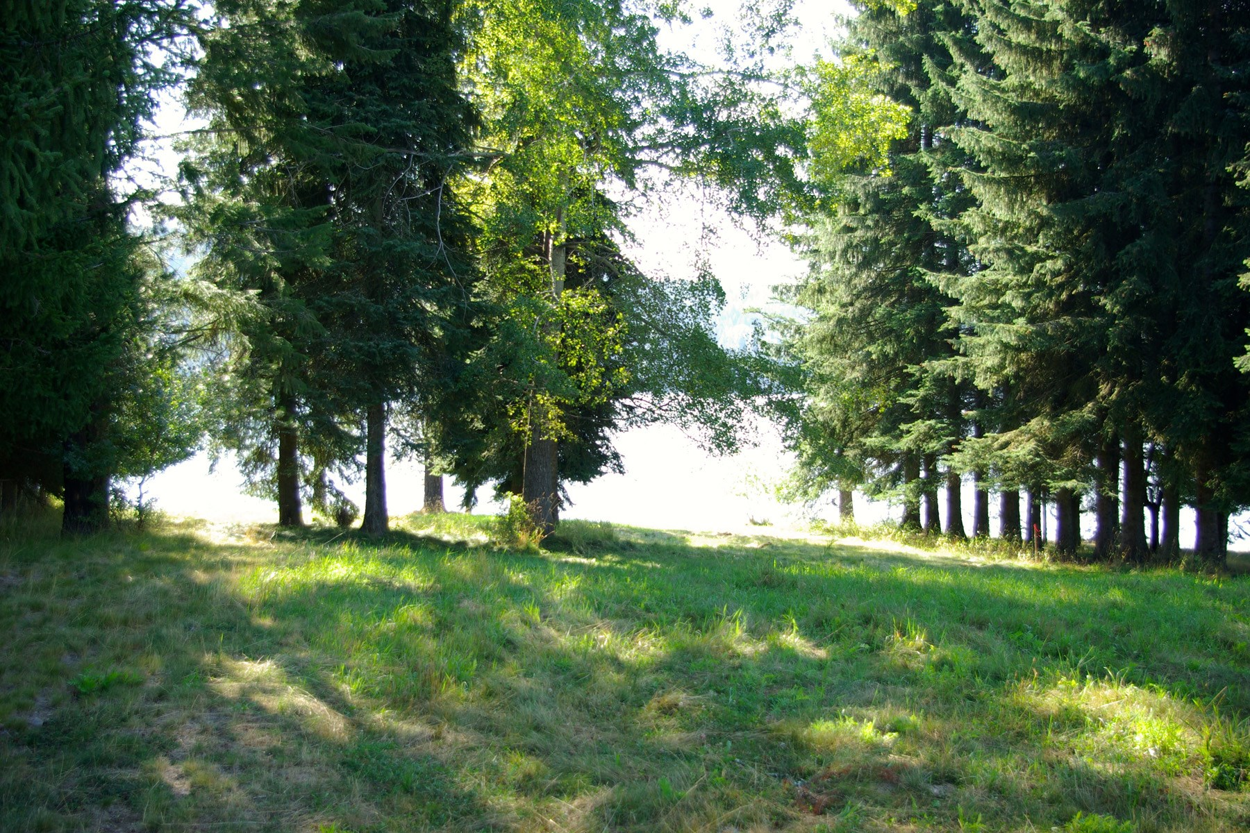 Land for Sale at Your own private sandy beach on Lake Cocolalla, Lot 1 Lot 1 Sandy Beach Ln, Cocolalla, Idaho, 83813 United States