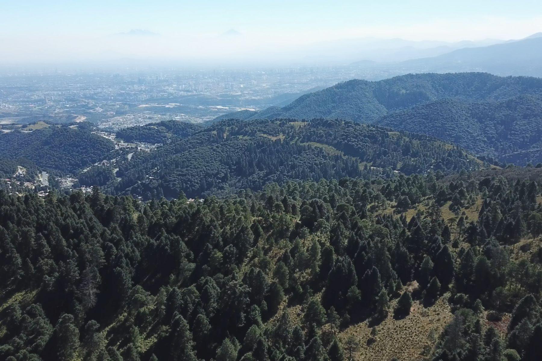 토지 용 매매 에 El Tule Lote para desarrollador, Naucalpan Villa Alpina Segunda Seccion Other Mexico, Mexico 53650 멕시코