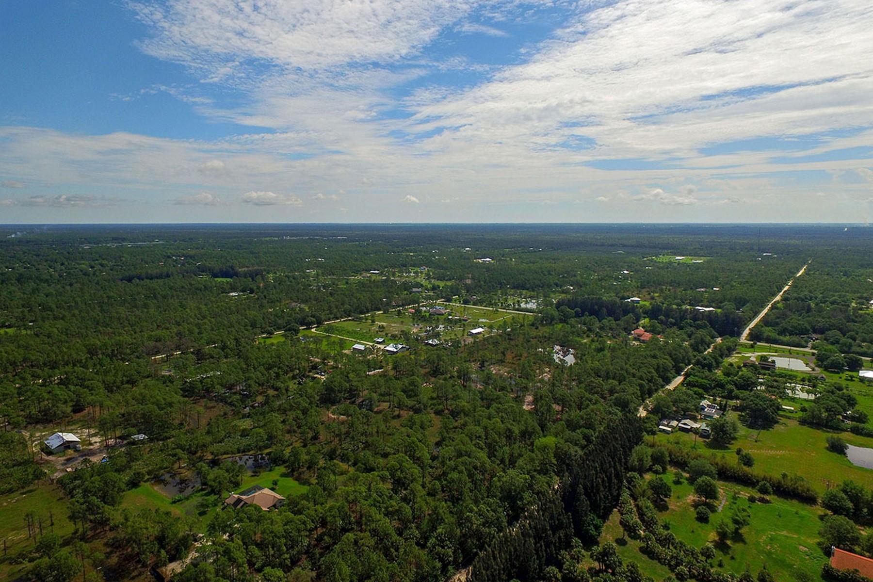 土地 のために 売買 アット Wonderful Five Acre Homesite 13180 83rd Street Fellsmere, フロリダ, 32948 アメリカ合衆国