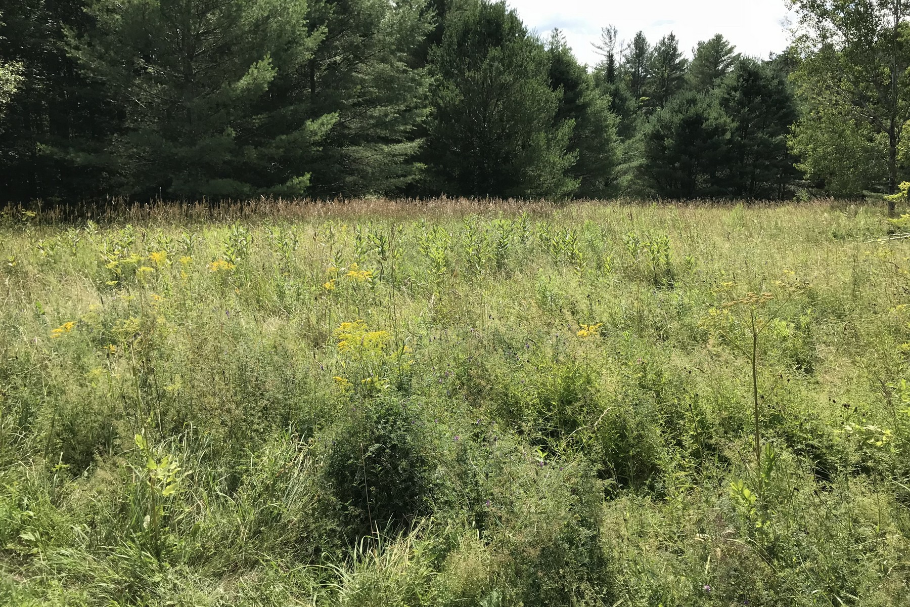 Land for Sale at Vermont Route 100 Route Weston, Vermont 05161 United States