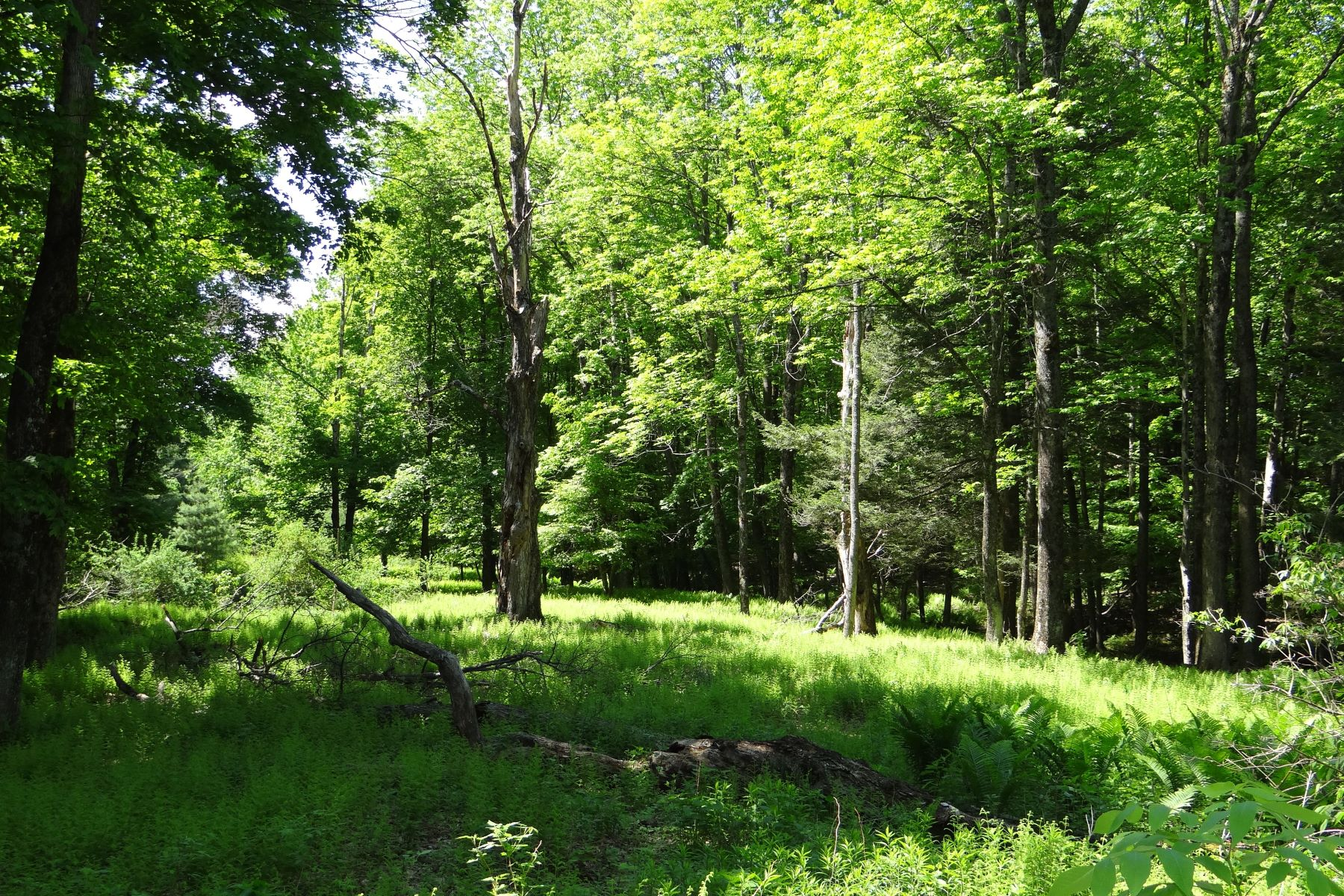 Land for Sale at Hathaway Road, Hartford Hathaway Rd Hartford, Vermont 05001 United States