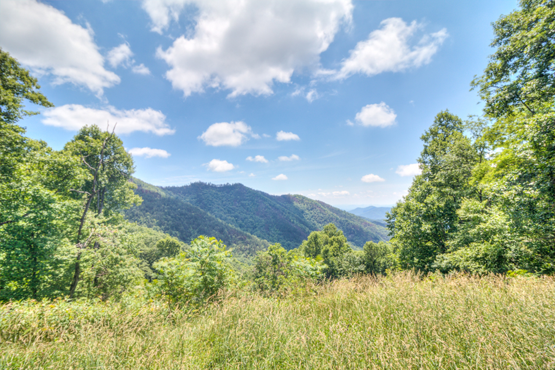 Land for Active at 152 +/- ACRES IN BURNSVILLE 10407 State Hwy 80 South Burnsville, North Carolina 28714 United States