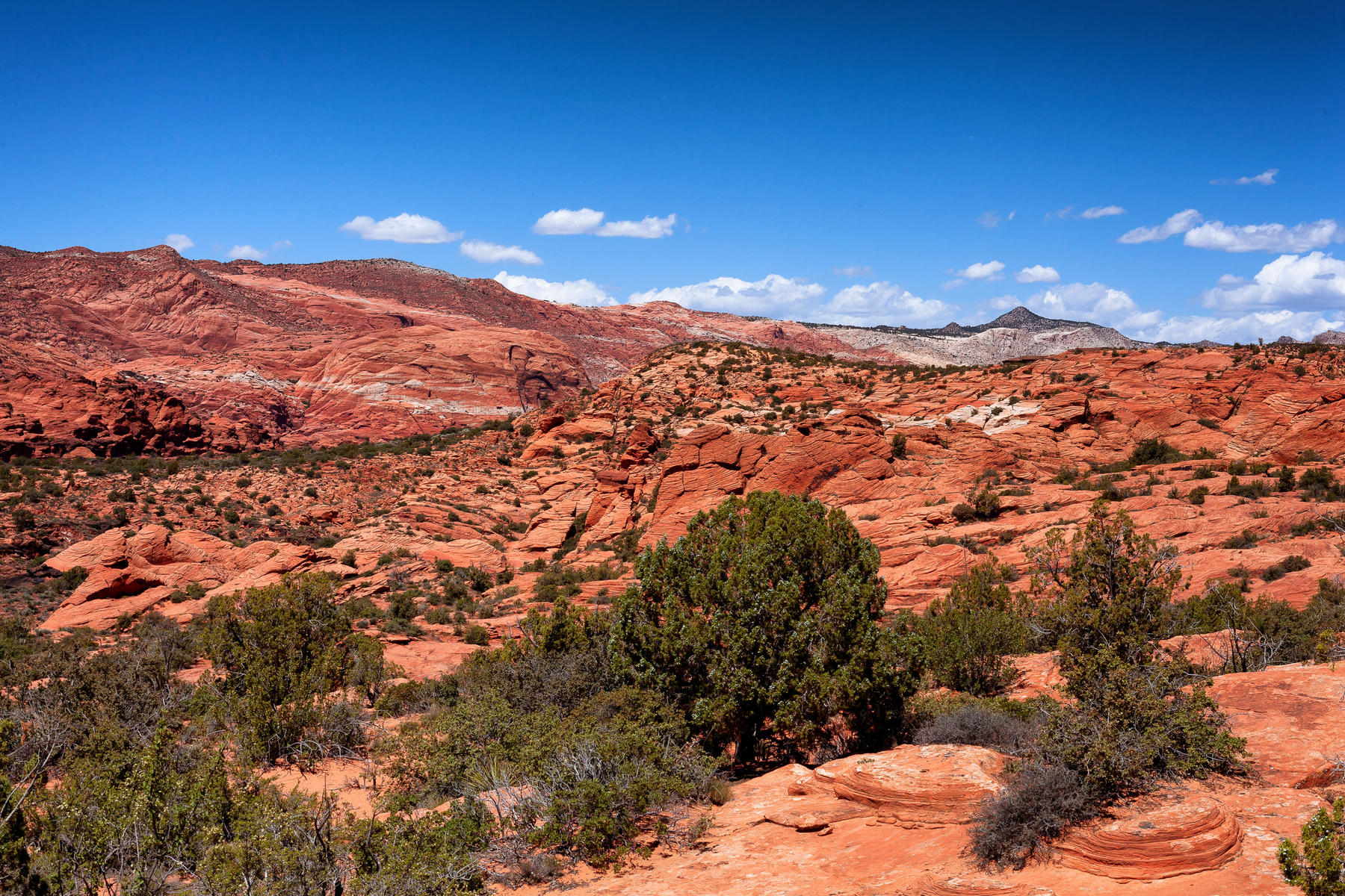 Additional photo for property listing at Unobstructed panoramic views Lot 121 Painted Sky Dr. St. George, Utah 84770 United States