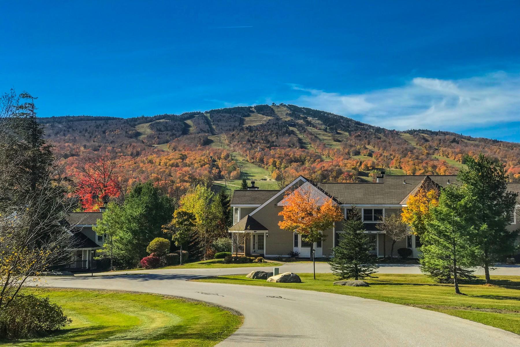 共管式独立产权公寓 为 销售 在 31B Dover Springs Lane, Dover 31B Dover Springs Ln, 多佛, 佛蒙特州, 05356 美国