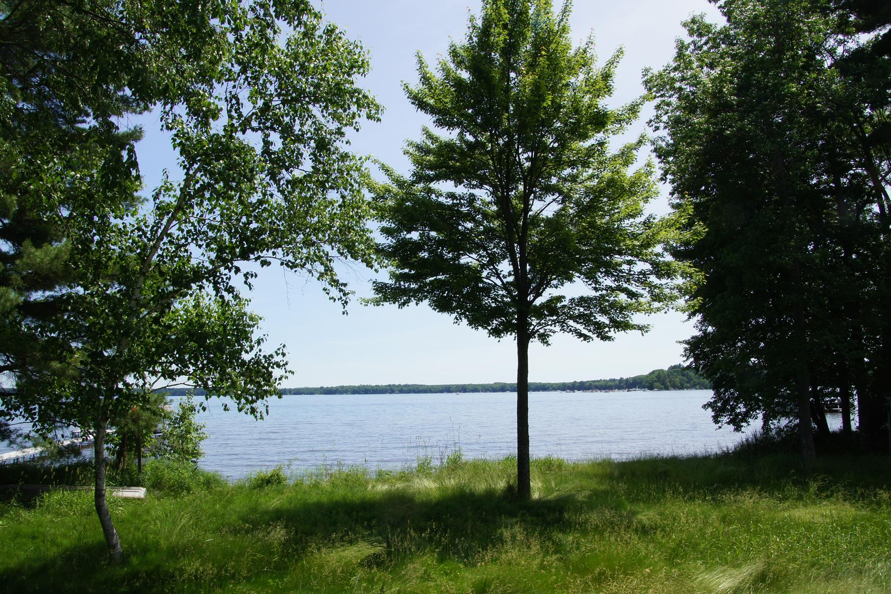 Land for Sale at Hayward, Wisconsin 54843 United States